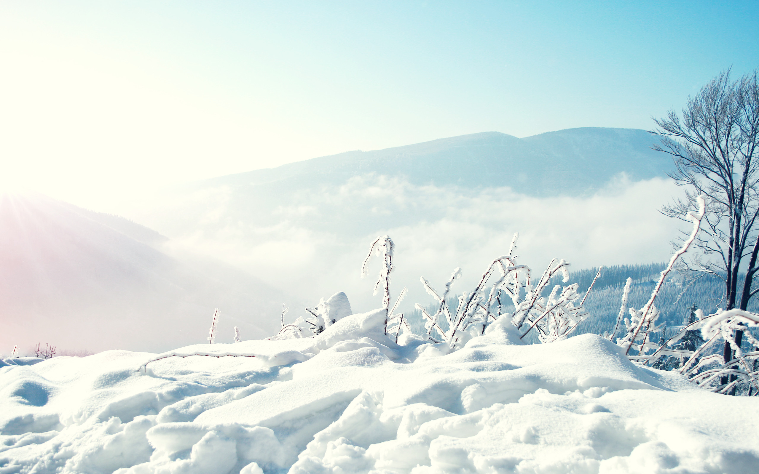 … snow scene hd wallpapers free download …