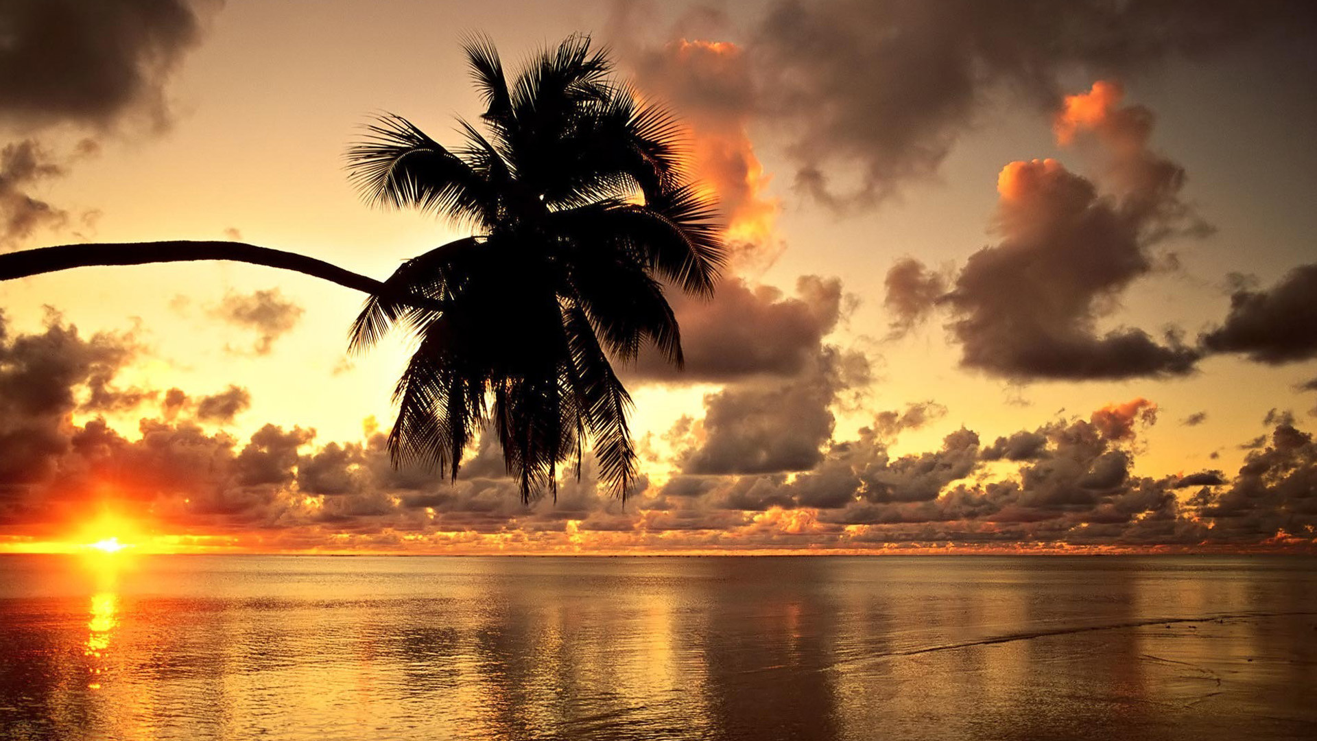 Tropical sunset beach beautiful scenery Wallpapers, Beach Pictures .