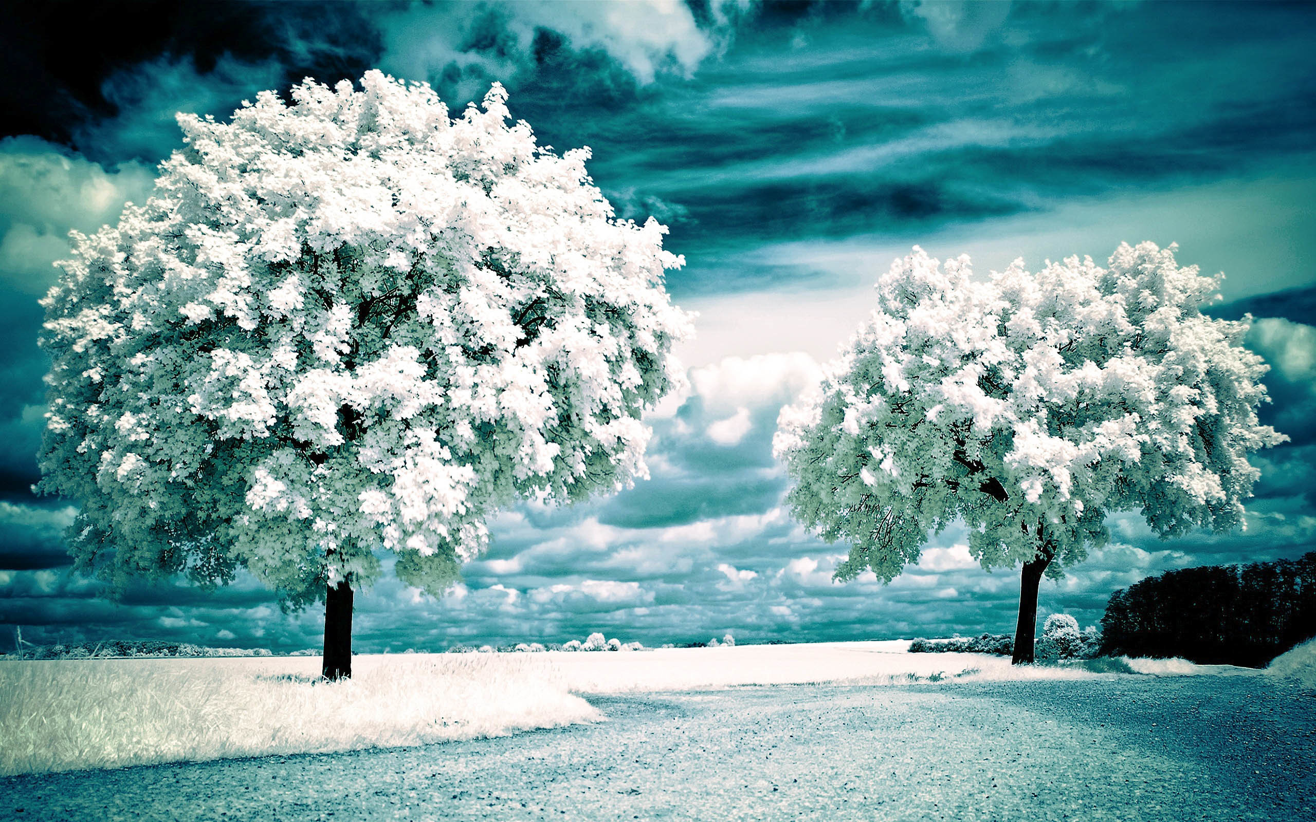Beautiful Scenic HD Wallpapers 2015 (High Quality) …