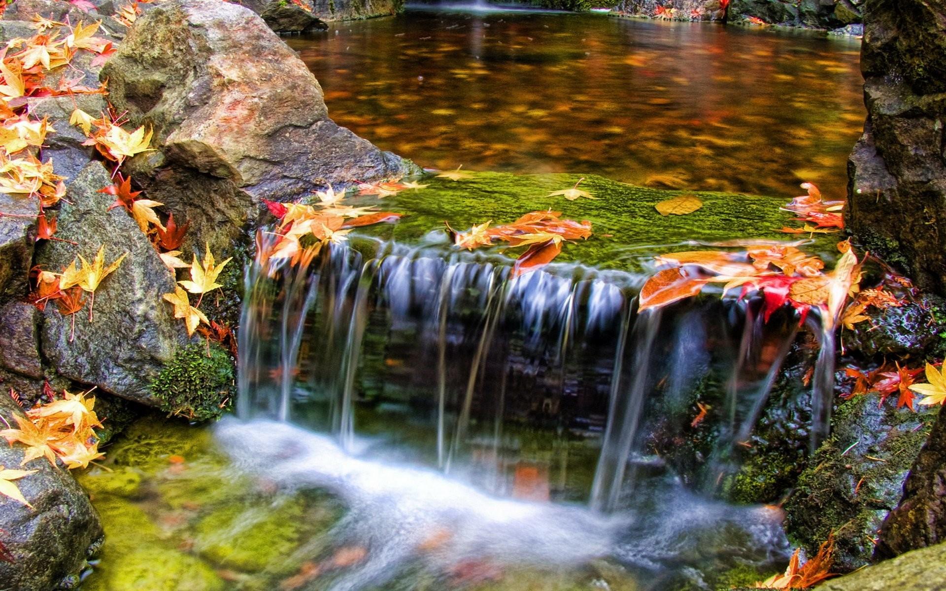 Free Screensavers and Backgrounds Screensavers · beautiful waterfall scenery  …