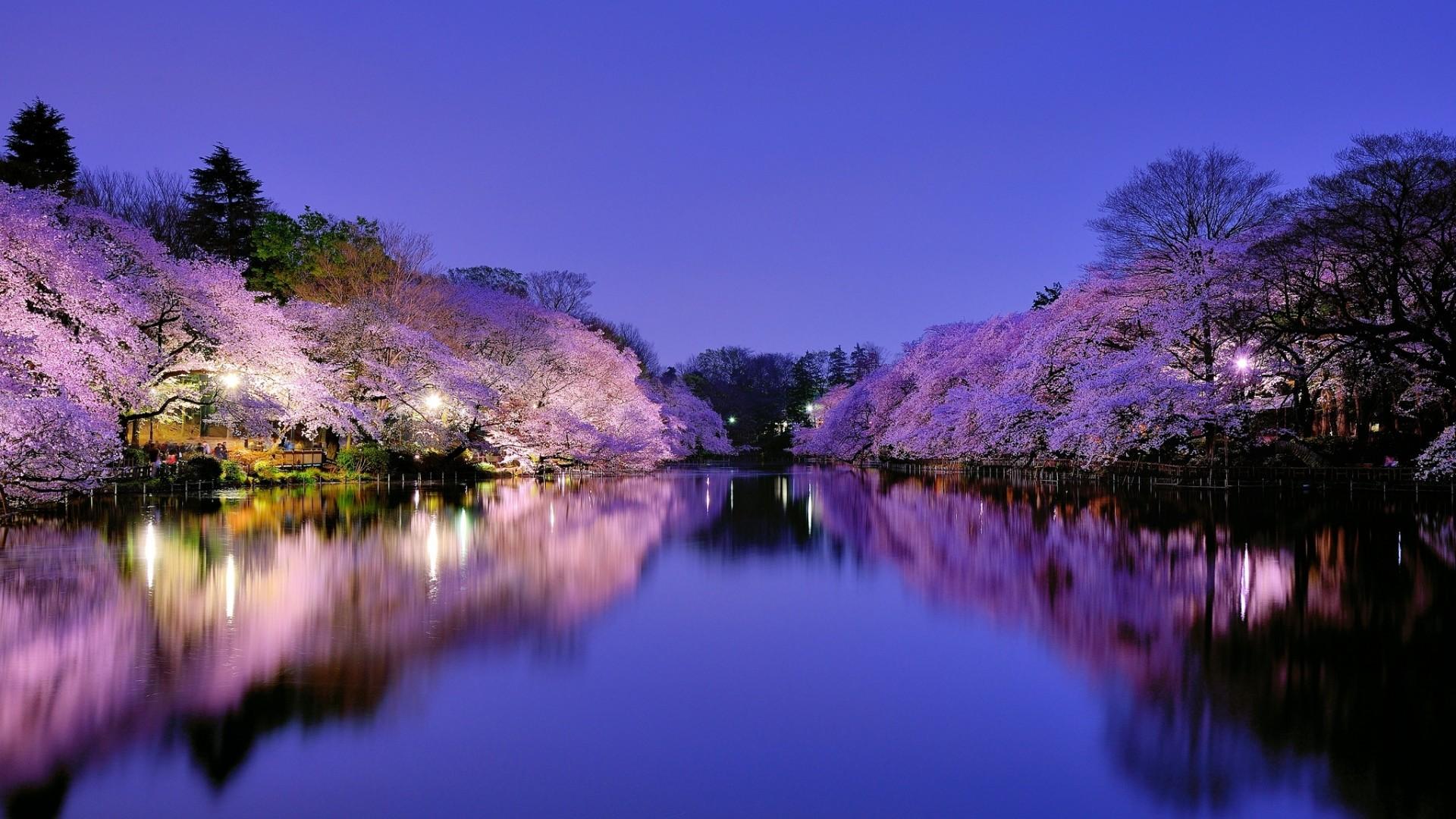 Preview wallpaper japan, osaka, city, park, lake, light, lights,