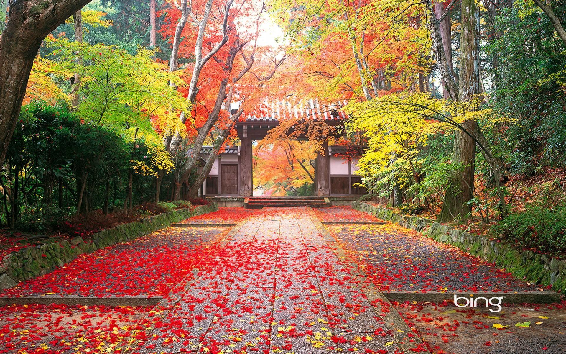 Japan Nature Wallpapers · Nature Wallpapers | Best Desktop .