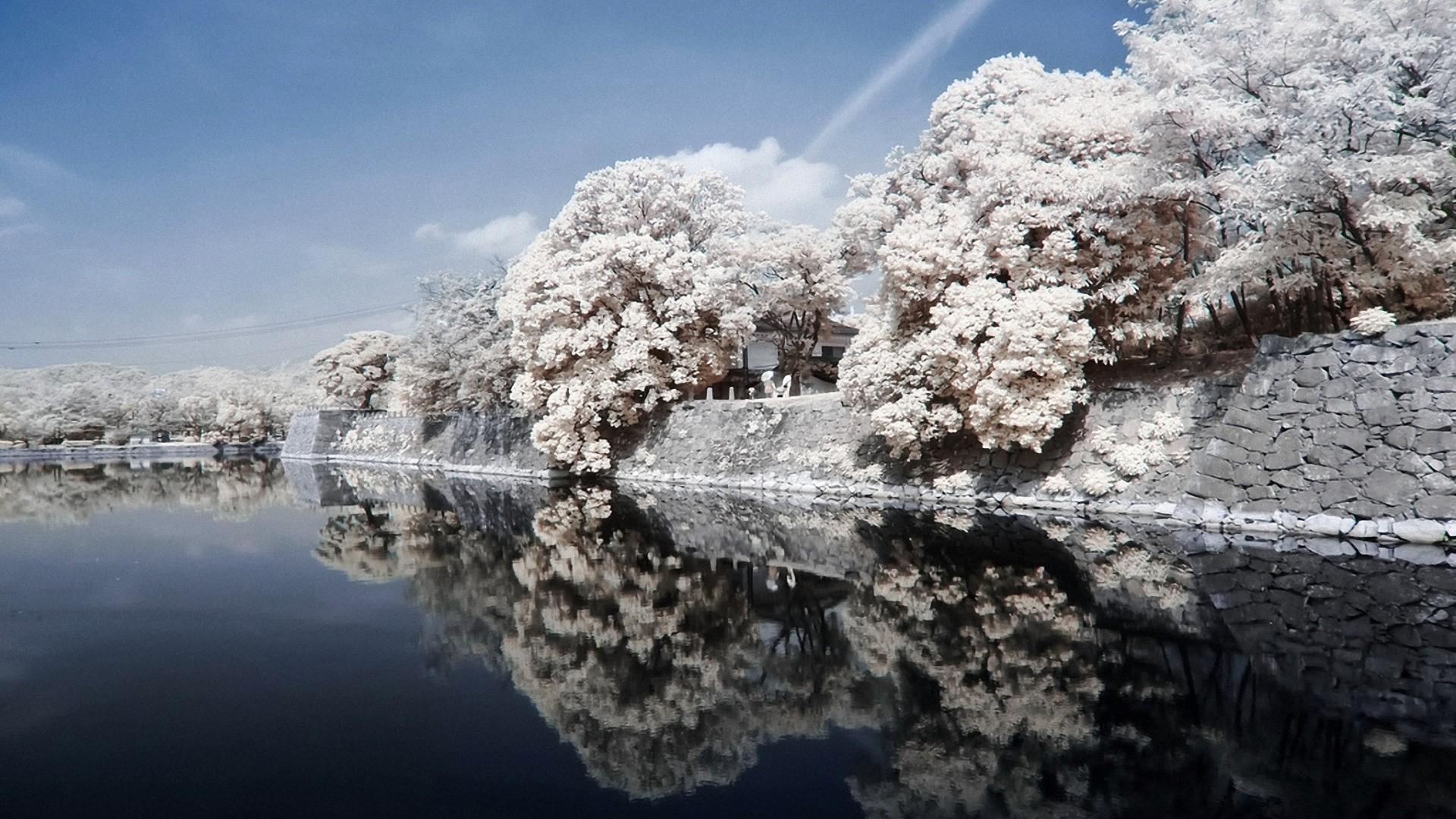 Preview wallpaper japan, coast, river, stone, trees, landscape, sky,