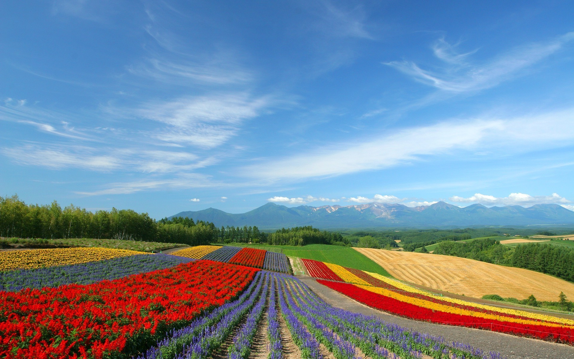 Japan Landscape Desktop Wallpaper 12434