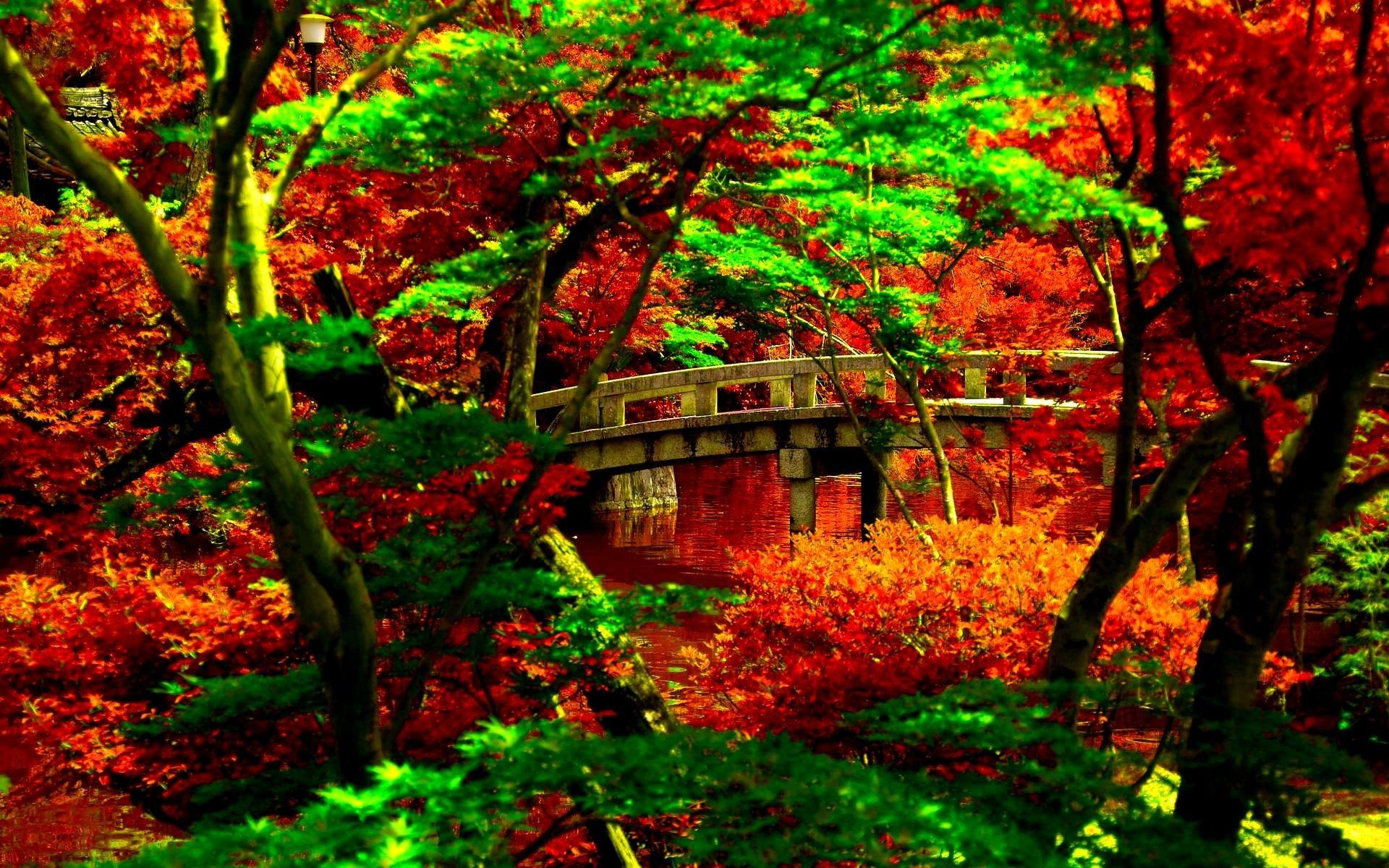 fabulous japanese garden desktop wallpaper japanese garden desktop with  garden desktop wallpaper