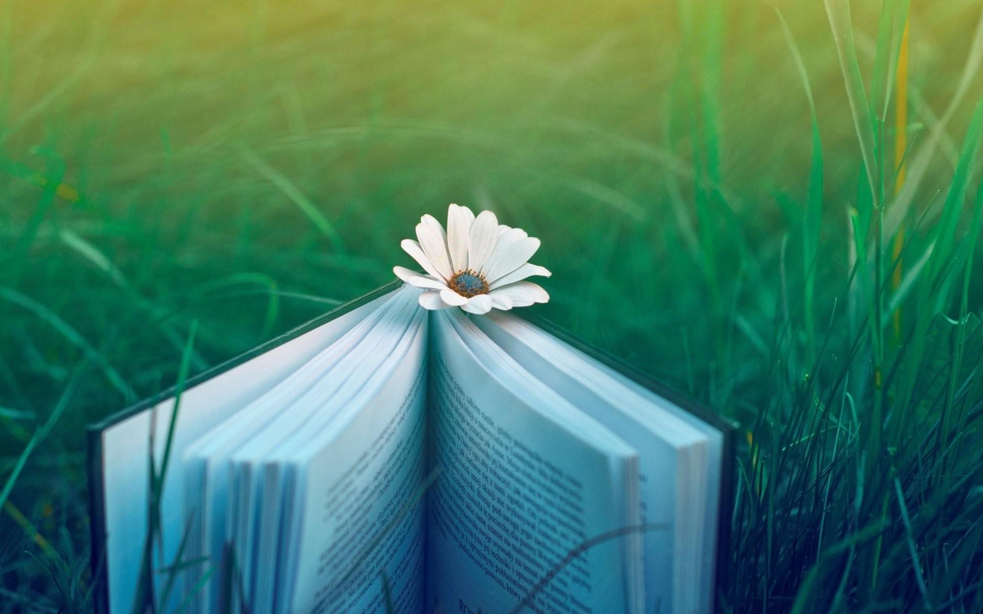 Books 540803