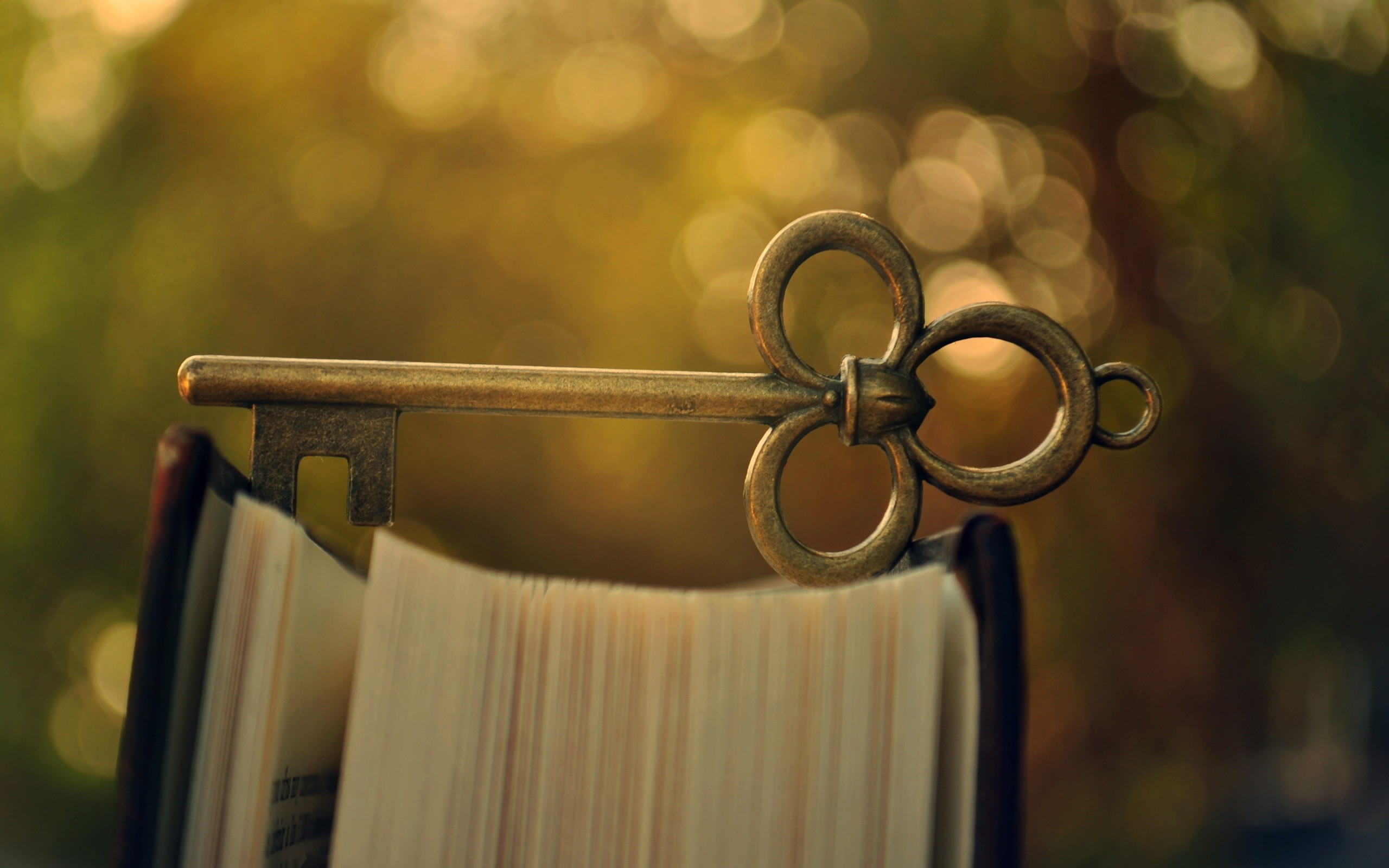 Beautiful Old Key On The Book Macro Wallpaper Background Wallpaper .
