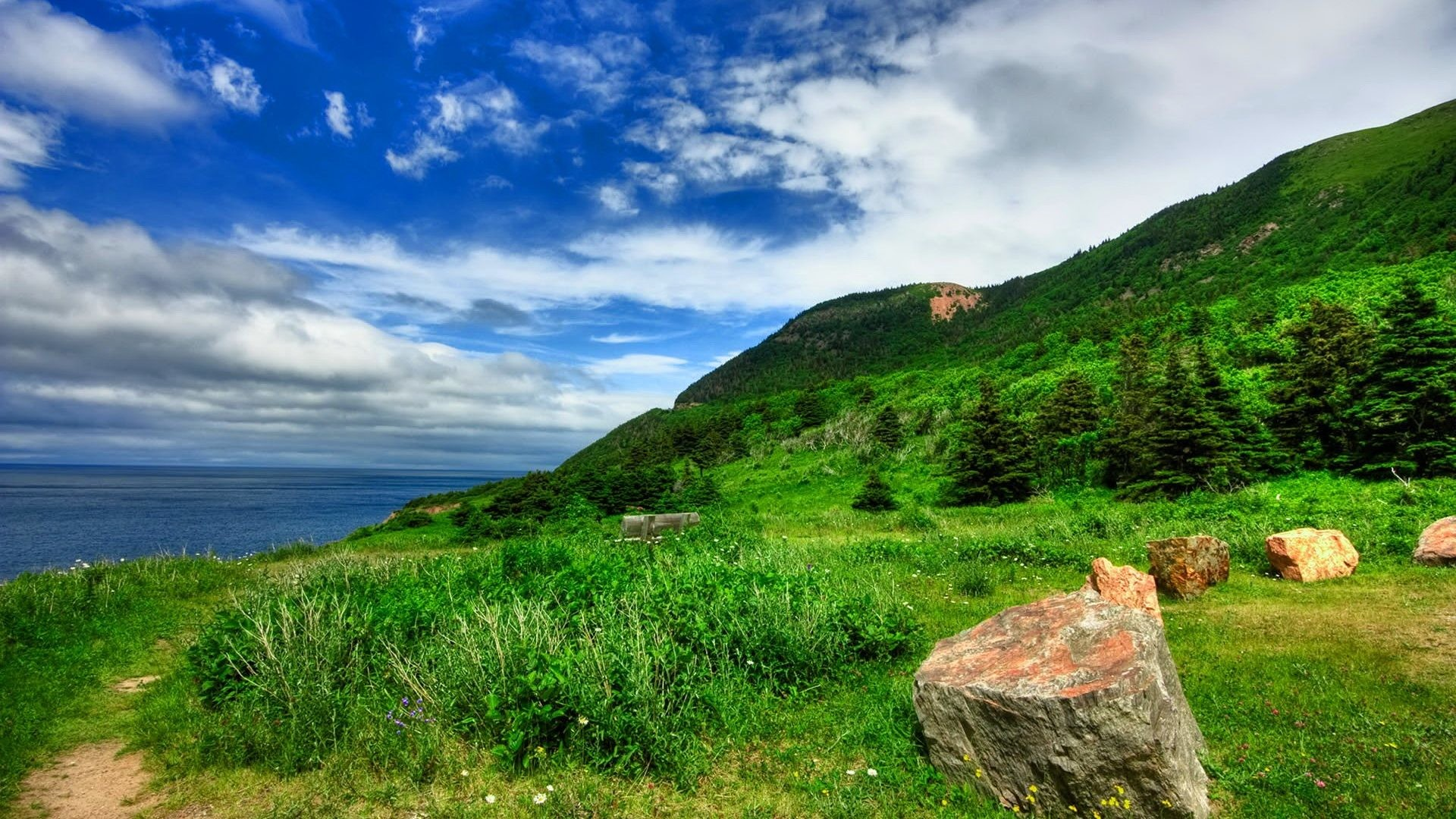 Rest Tag – Beautiful Nature Grass Lake Relax Rest Coast Sea Quiet Sky Nice  Summer Lovely