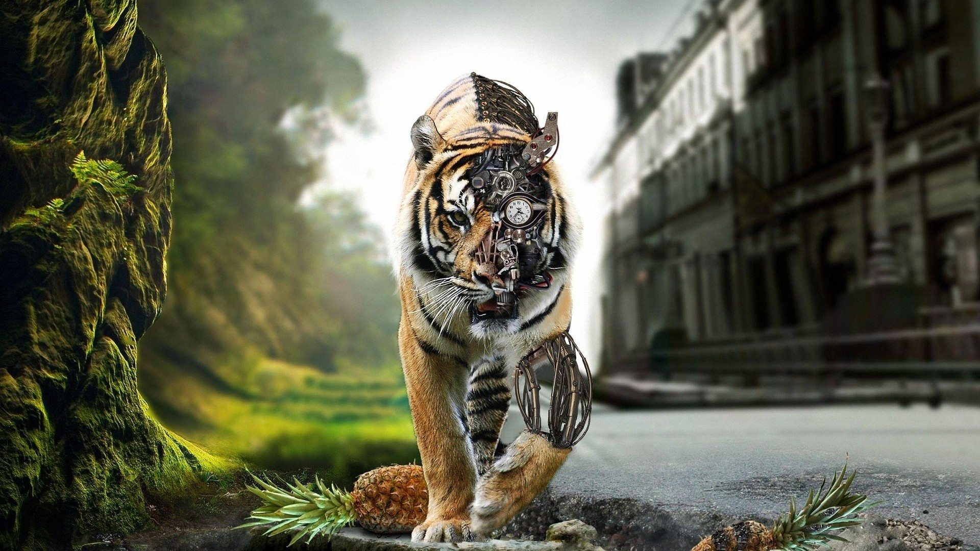 0 Tiger Wallpaper Full HD Awesome Fantasy Tiger 1080P full  HD Wallpapers