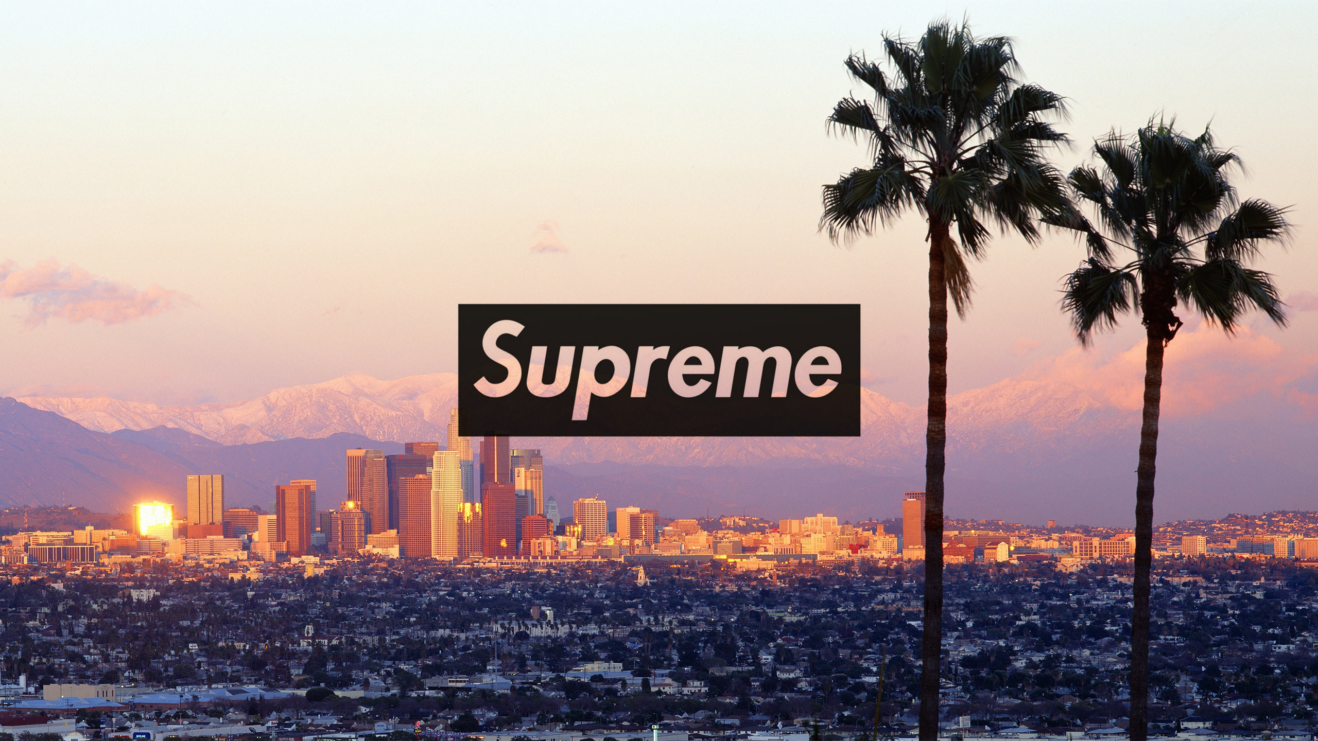 Download the Los Angeles Supreme wallpaper below for your mobile device  (Android phones, iPhone etc.)