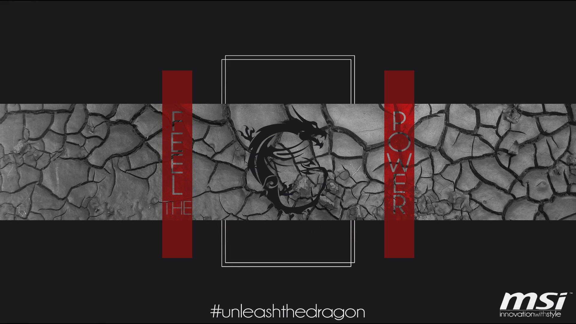 MSi Dragon Logo 10 Wallpaper HD