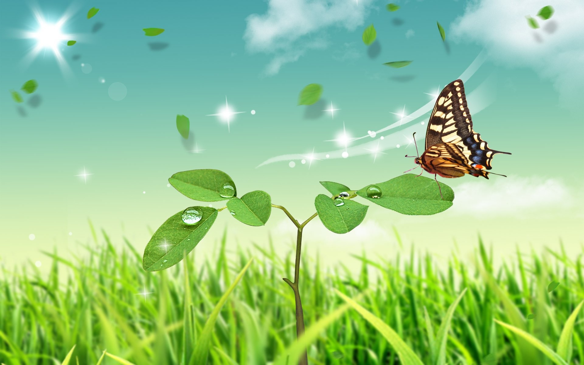Cute 3D Butterfly Desktop Wallpapers – WallpaperSafari