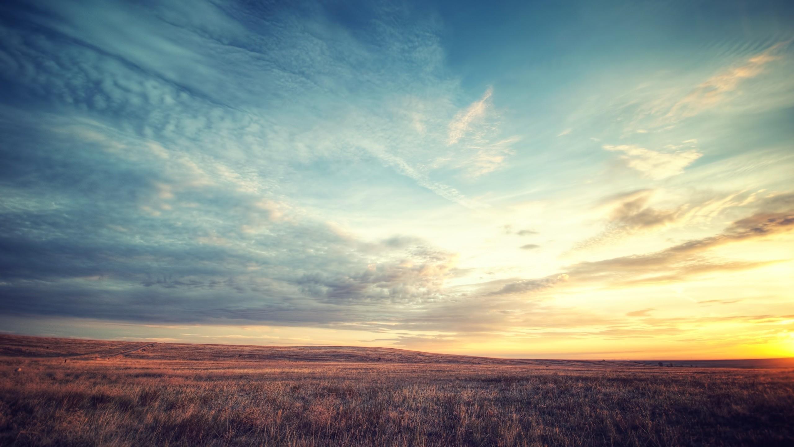 Preview wallpaper field, dawn, sky, beautiful scenery 2560×1440