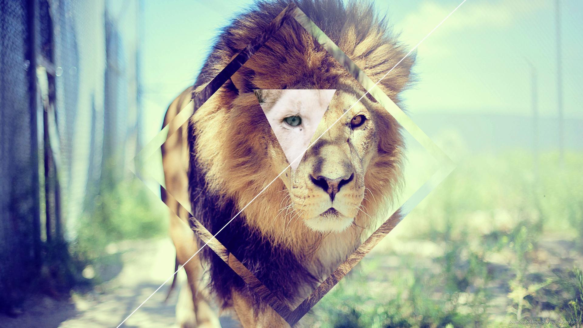 Hipster-Wallpaper-Concept-Lion