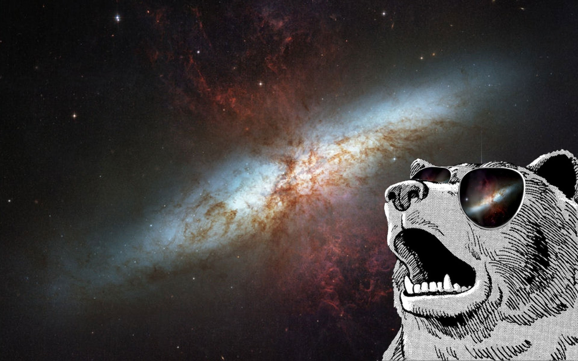dank meme wallpaper desktop – photo #11