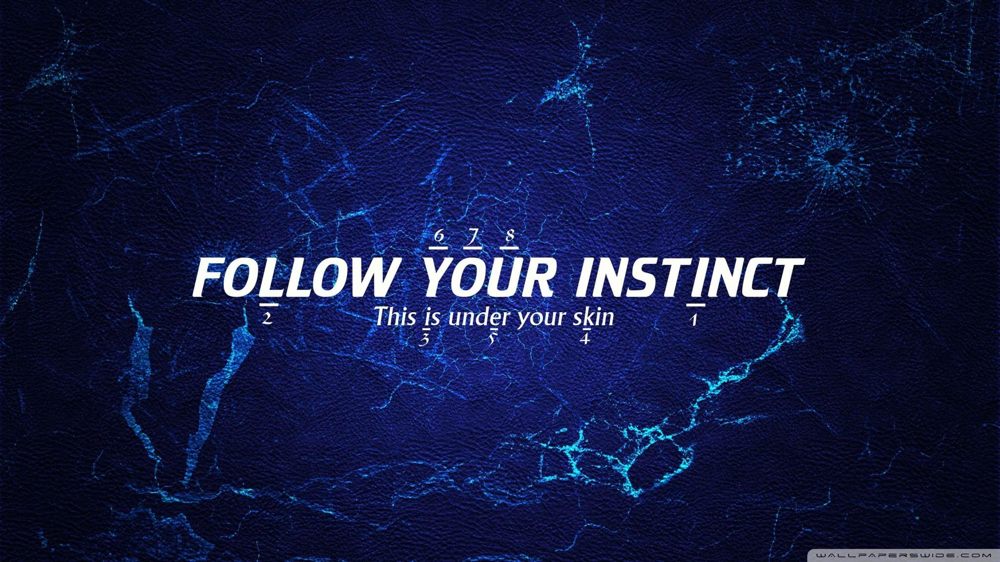 Instinct Wallpaper 2048×1152 #164970 HD Wallpaper Res: .