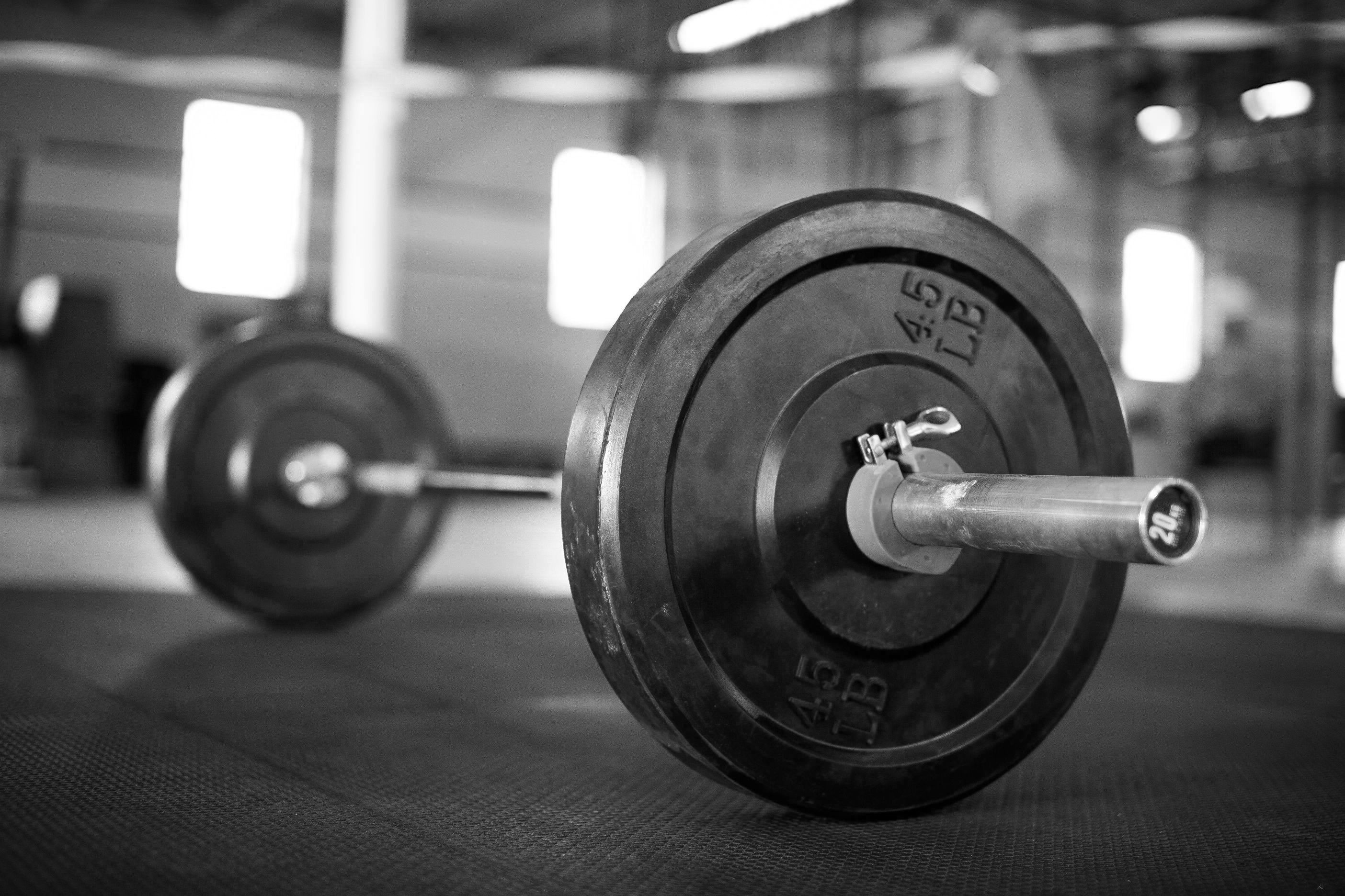 barbell – Google Search