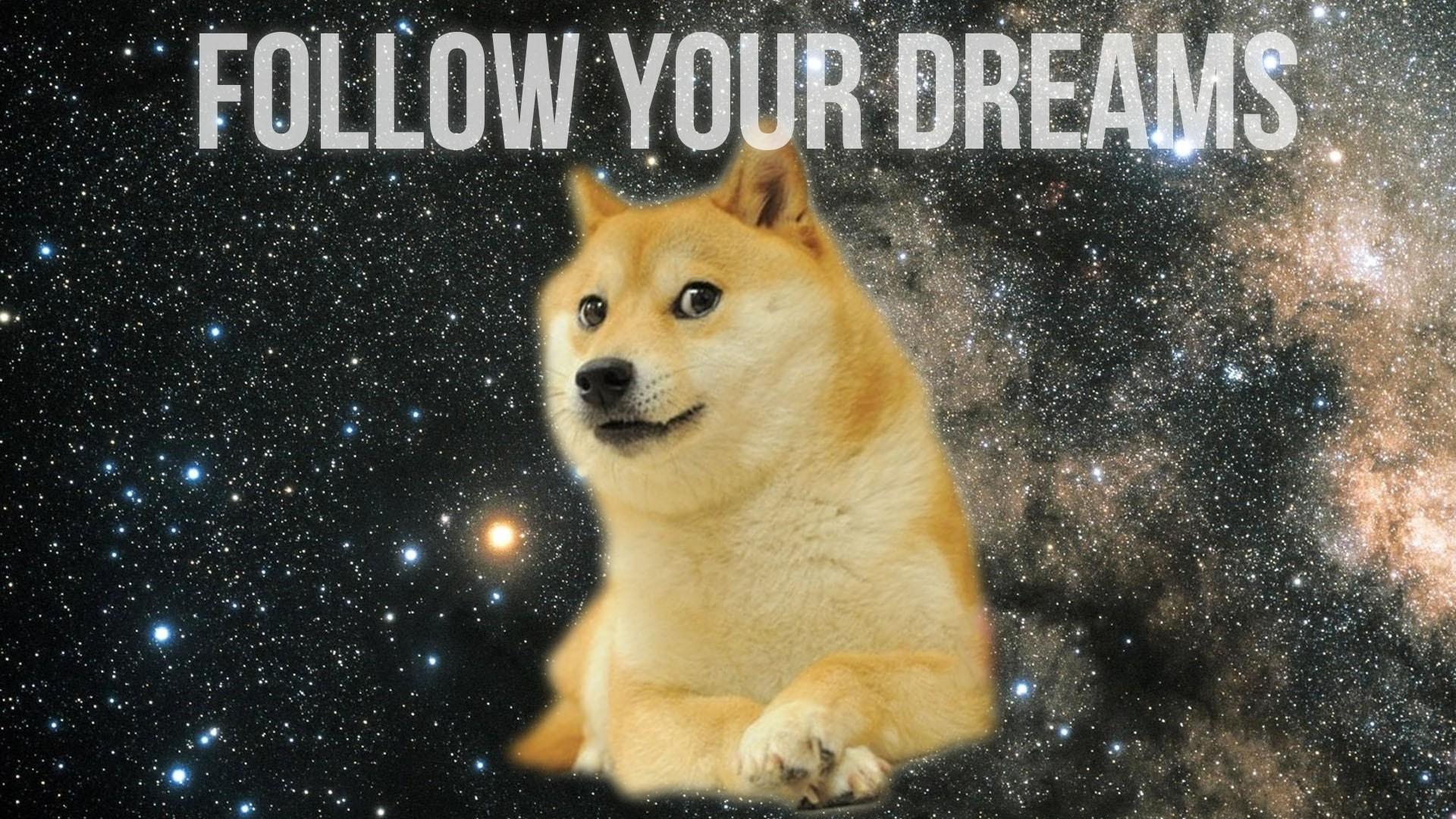 Doge meme wallpaper – photo#12