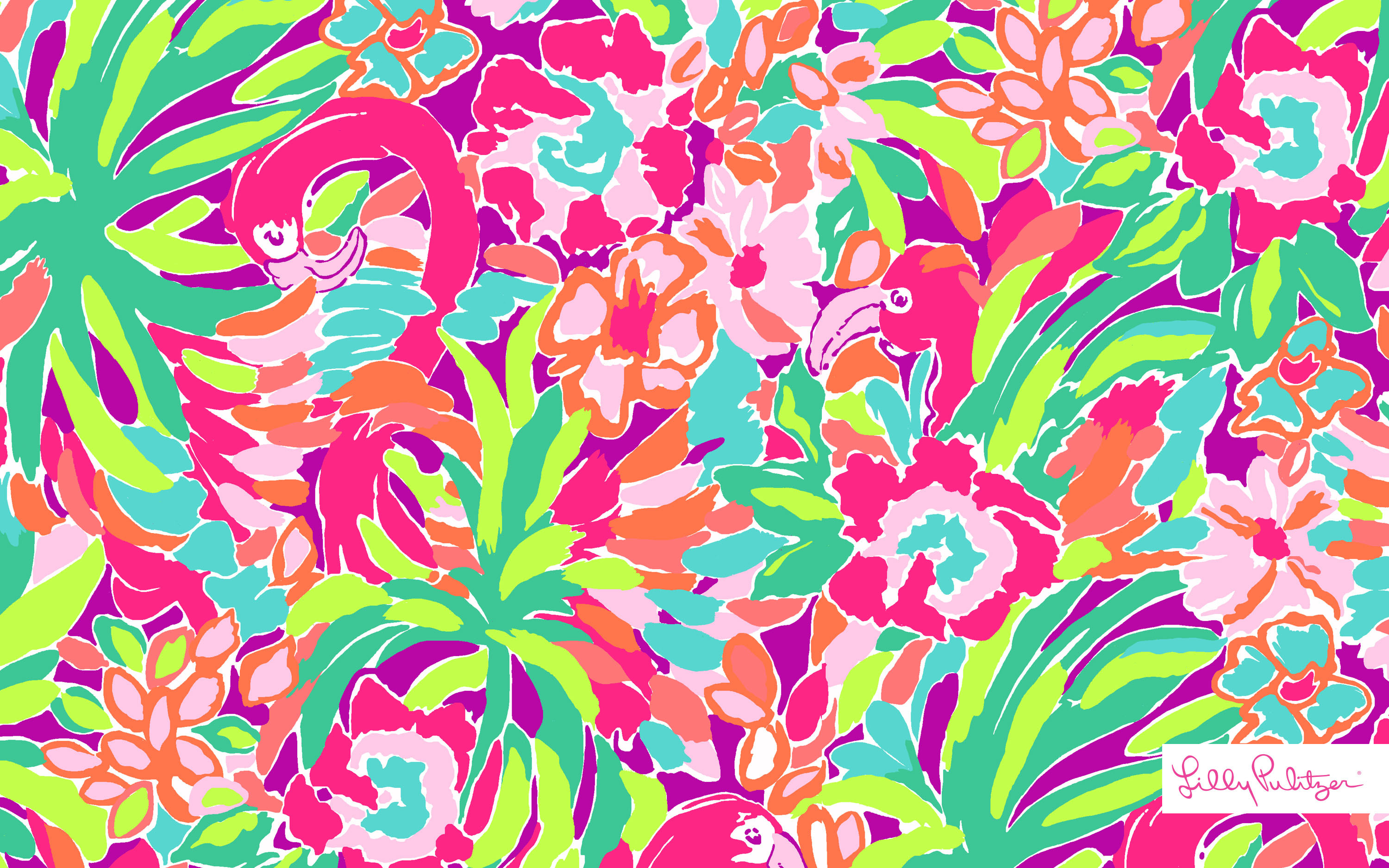 Images About Wallpaper On Pinterest Desktop Wallpapers Free And Lilly  Pulitzer. closet photos. johnson …