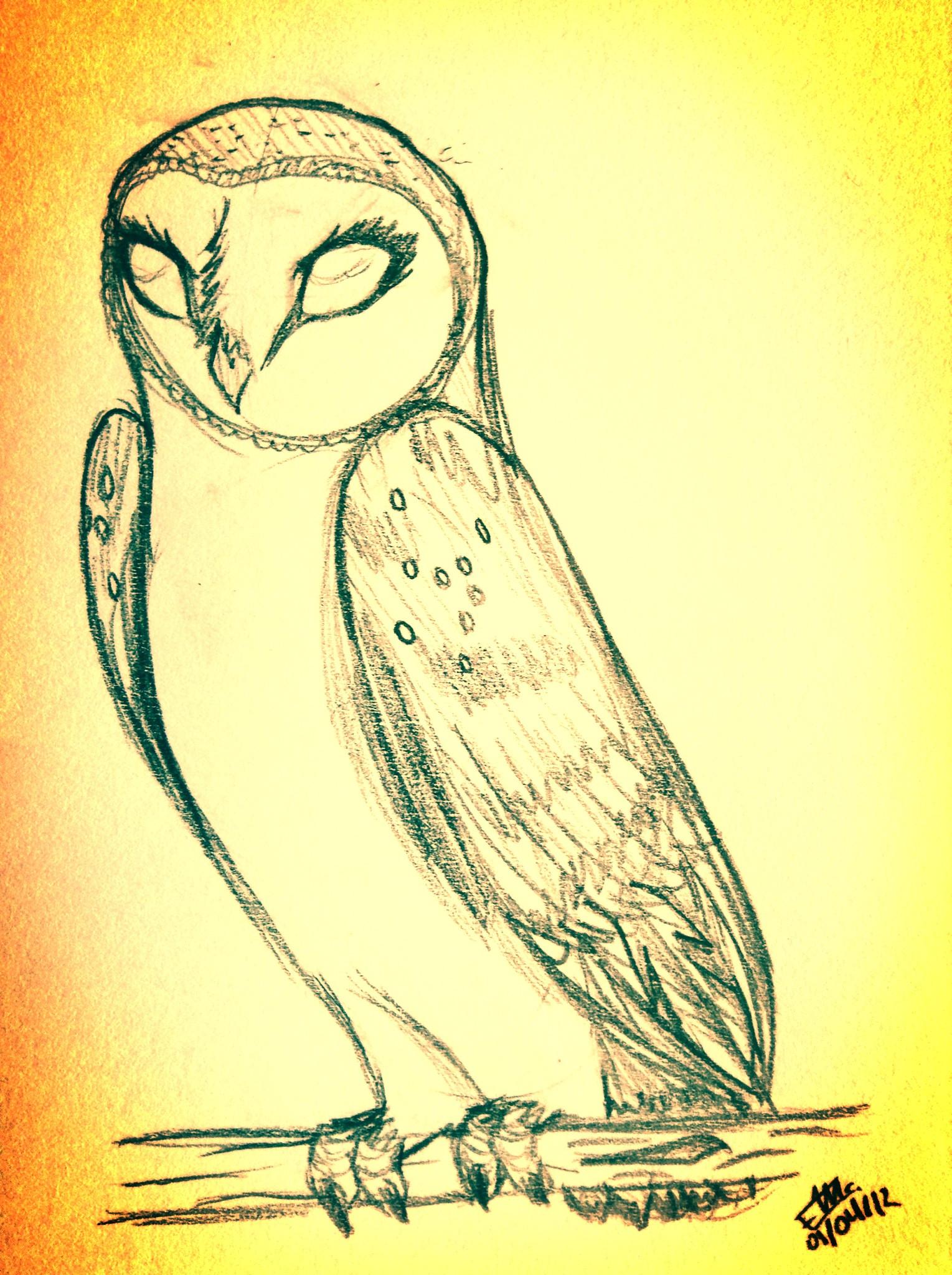… OvO Owl by wolf–eyes