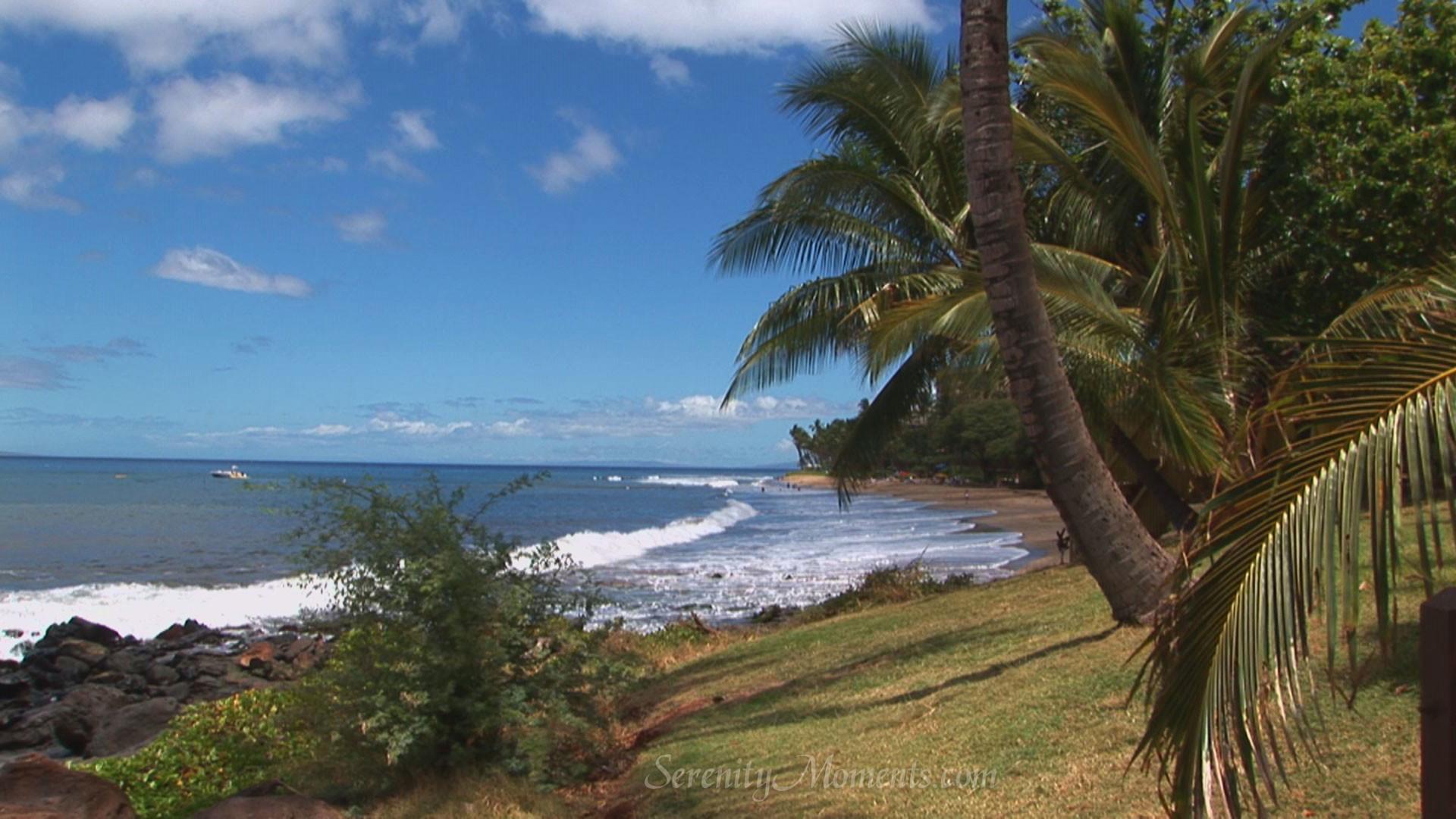 screensavers, wallpaper, tropical, screensaver, beach, mauai