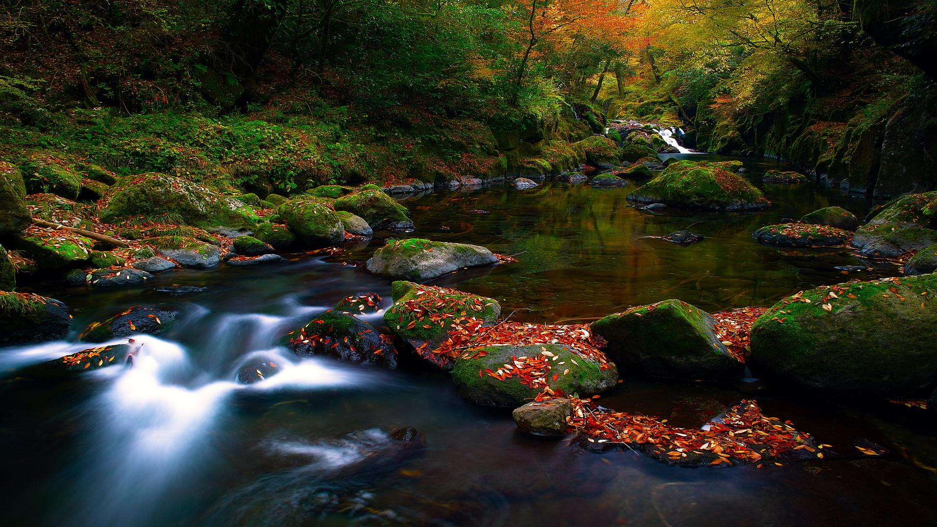 Fall Nature Screensavers Free Nature Screensavers