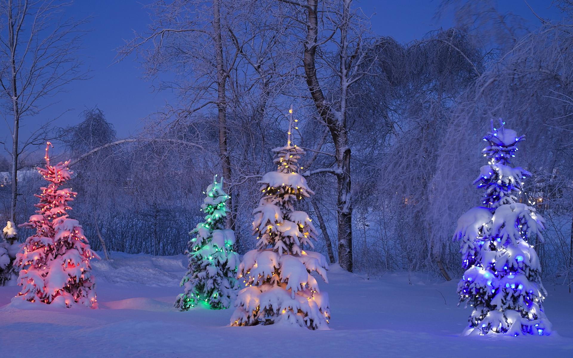 Новогодние Живые Обои На Комп