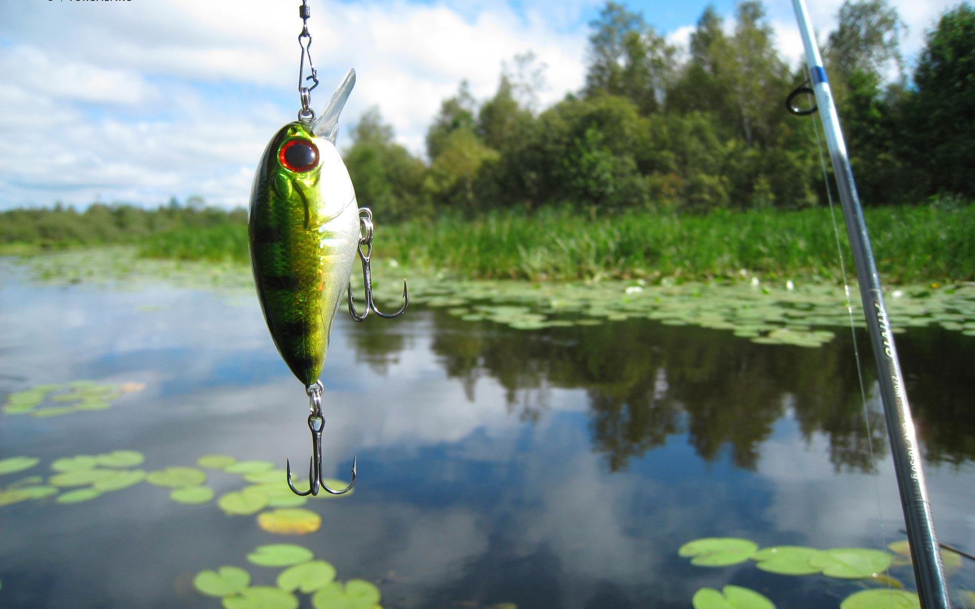 Bass Fishing Wallpaper Hd Fishing-wallpaper-5.jpeg
