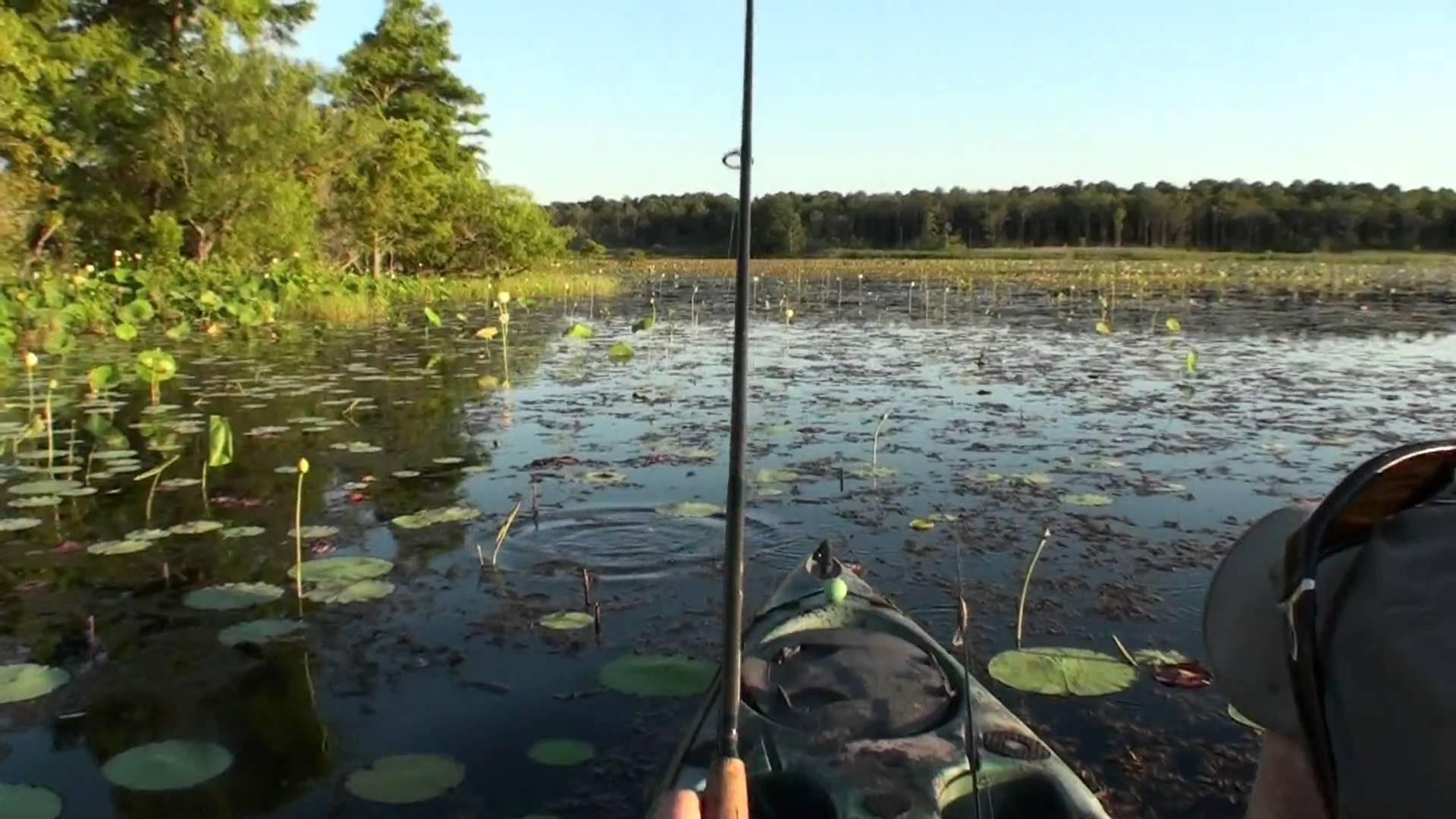 Kayak Bass Fishing – Capt Ken Designer Bass Frogs Clone Series 2 – YouTube