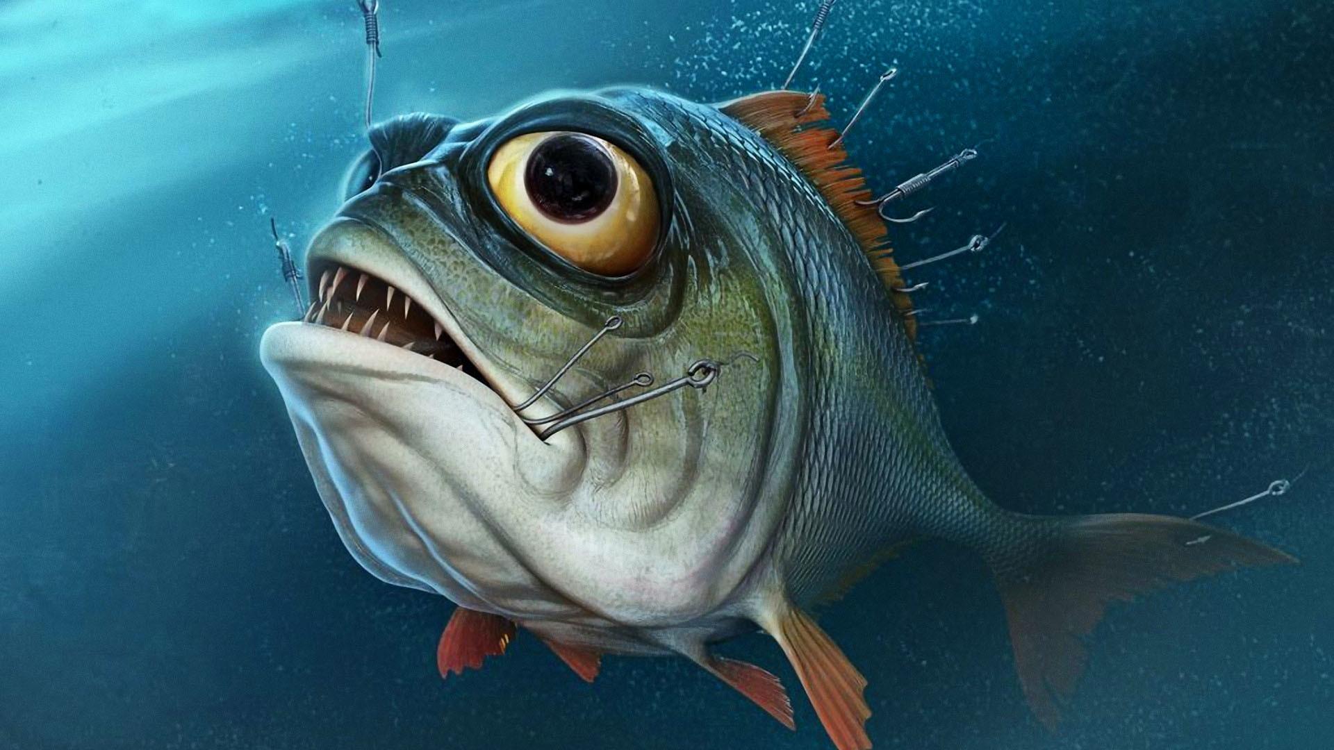 Fishing Wallpaper HD free download.