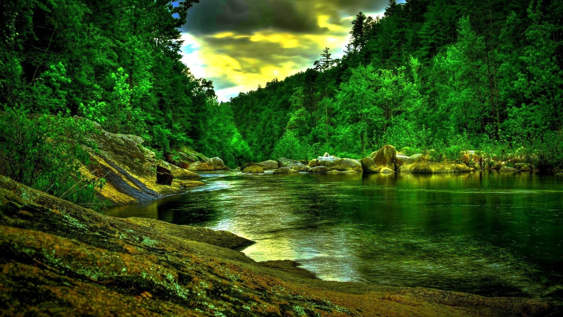 Amazon Desktop Wallpaper 3d Nature Full Screen. 1920×1200. Amazon Tag –  Amazon Free Nature Desktop Images for HD 16:9 High Definition 1080p