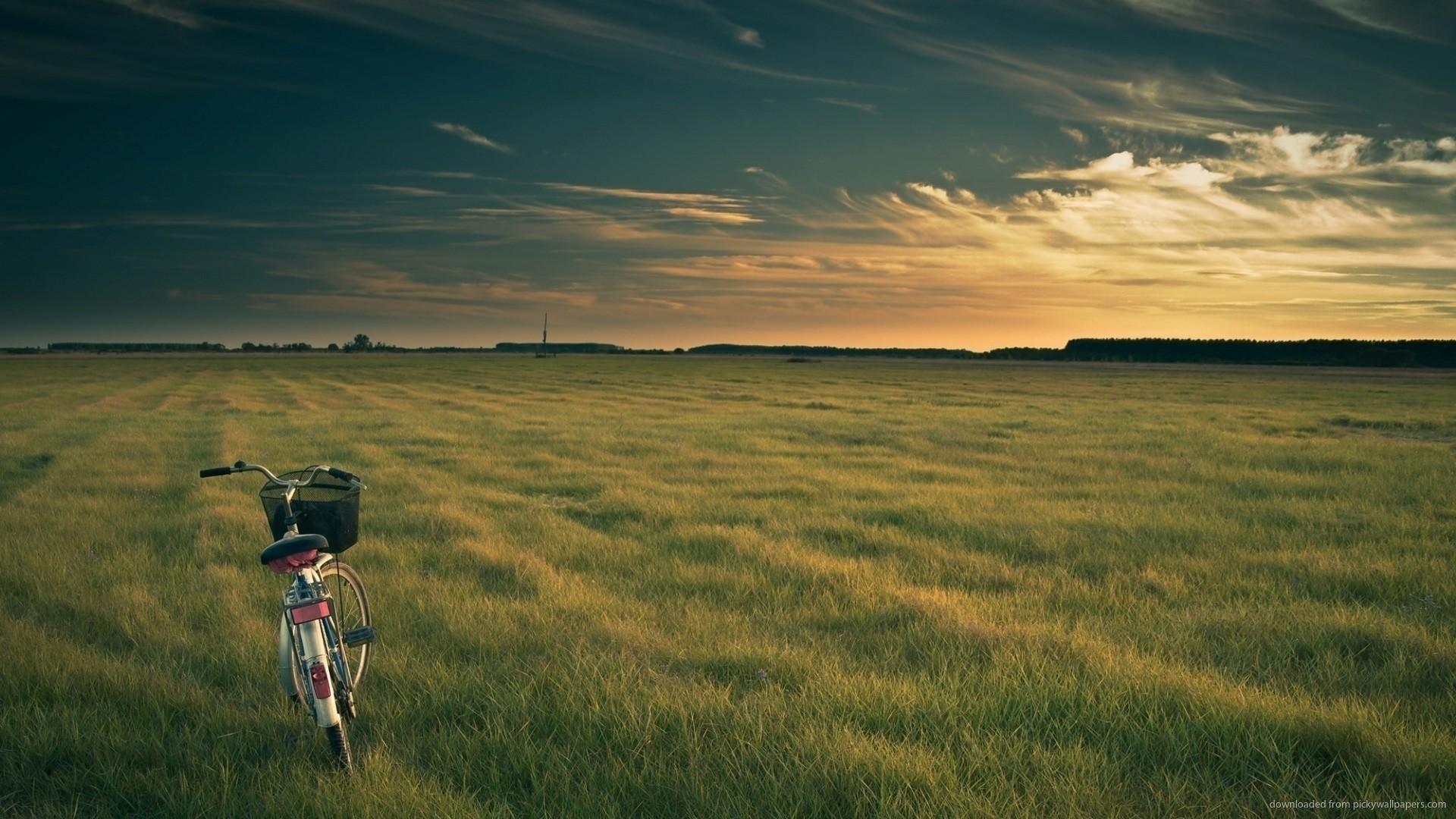 Bicycle In Open Field Desktop Wallpaper picture
