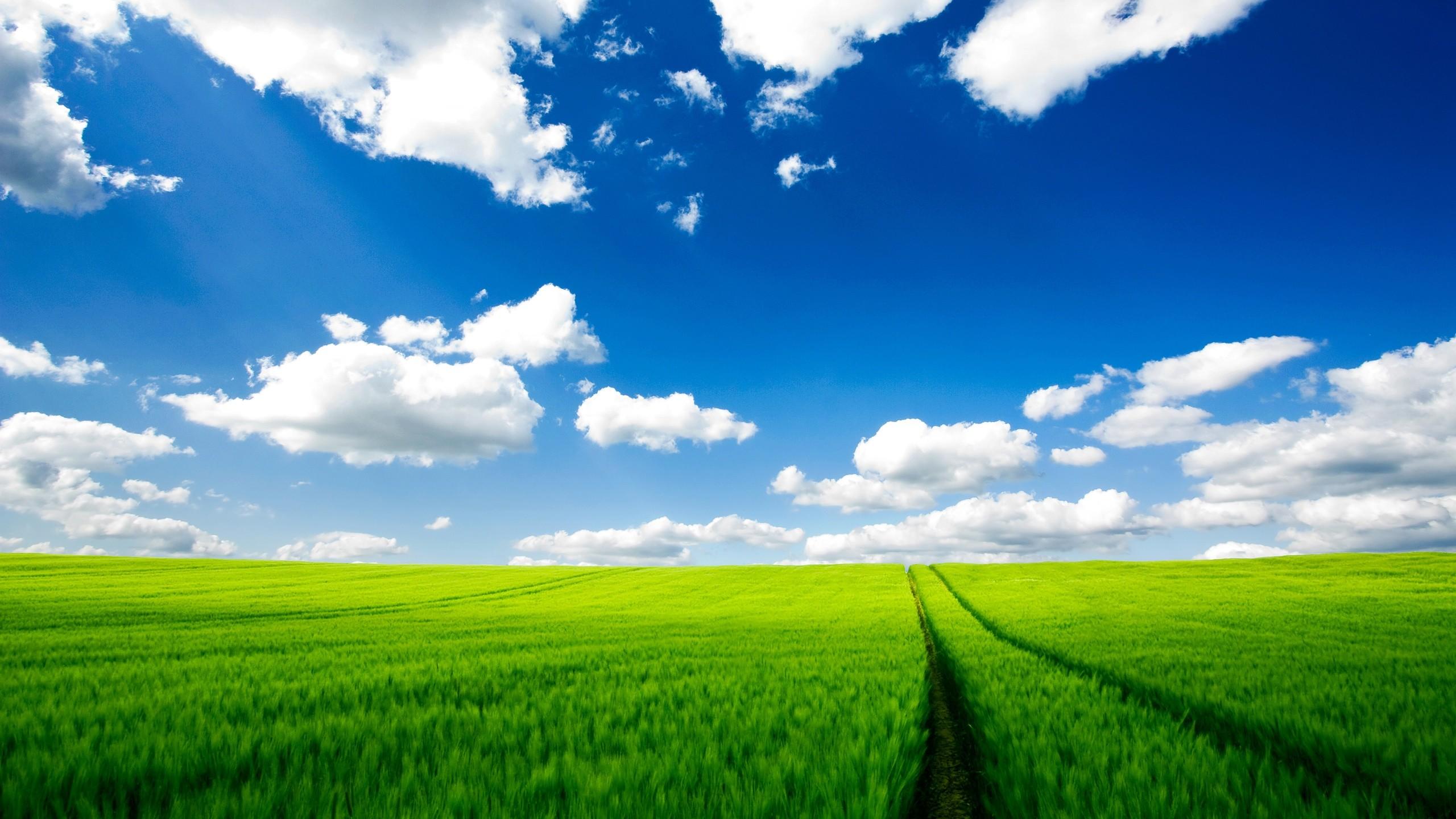 <b>Nature</b> iPhone 6 Plus <b>Wallpapers<