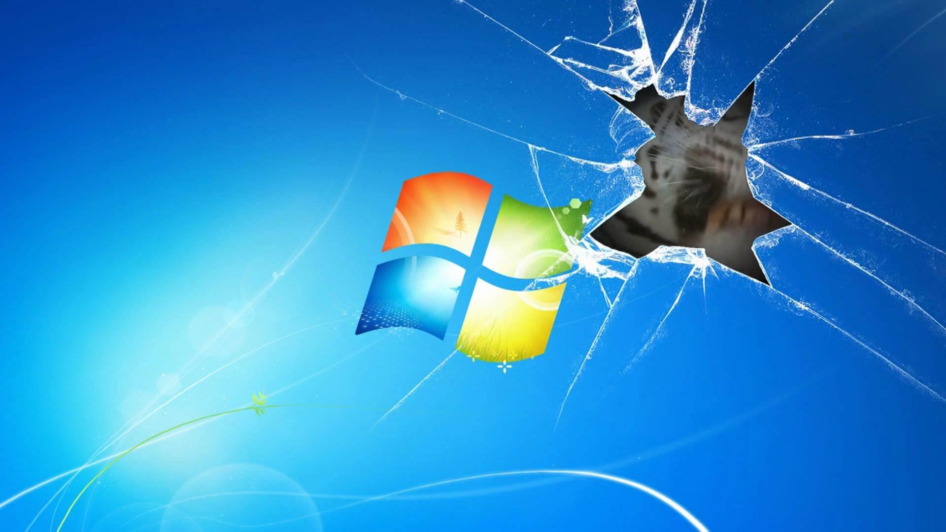 Windows 7 Wallpaper Animated Tiger on broken screen