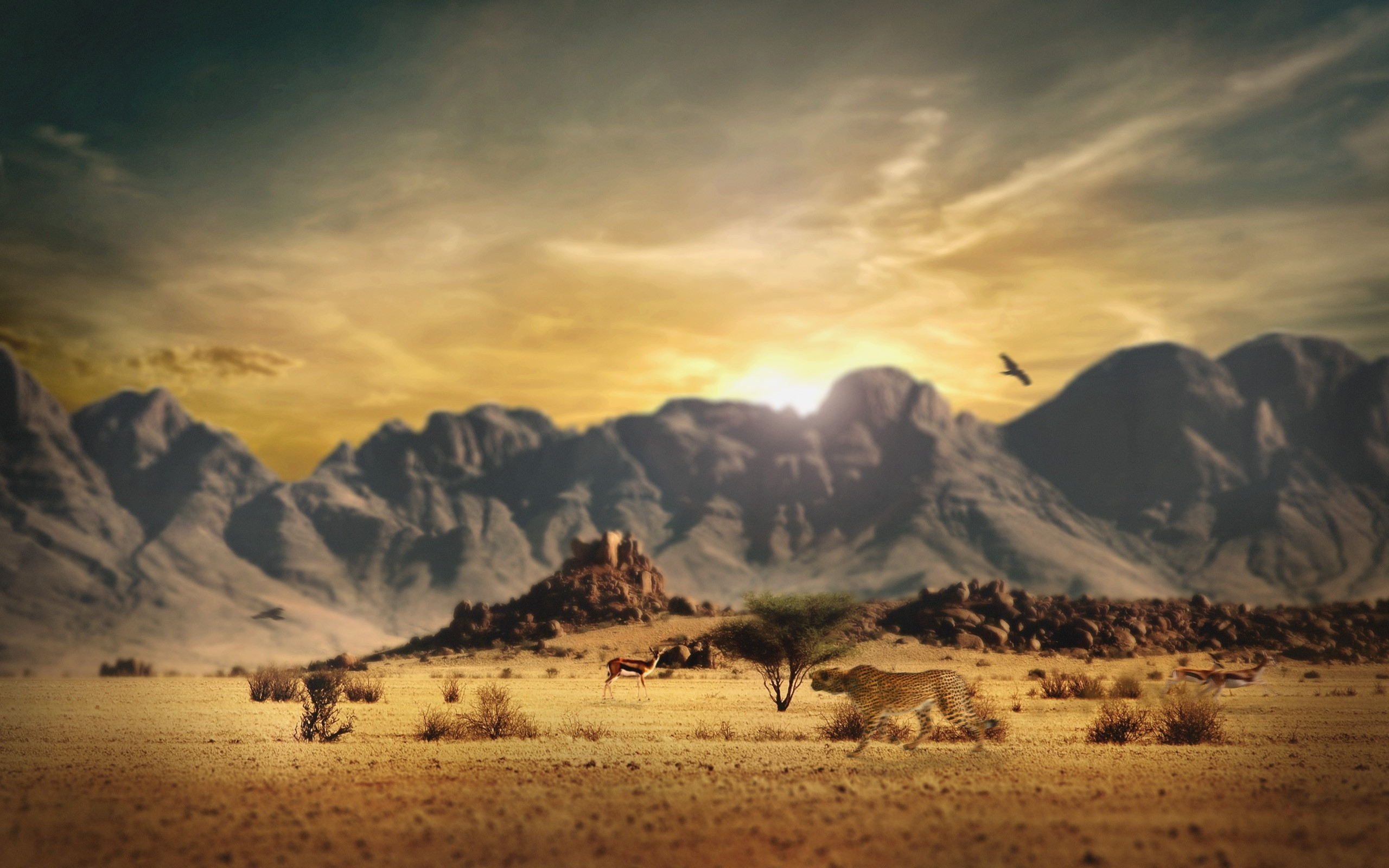 wallpaper.wiki-Wild-Country-Western-Background-PIC-WPD00118
