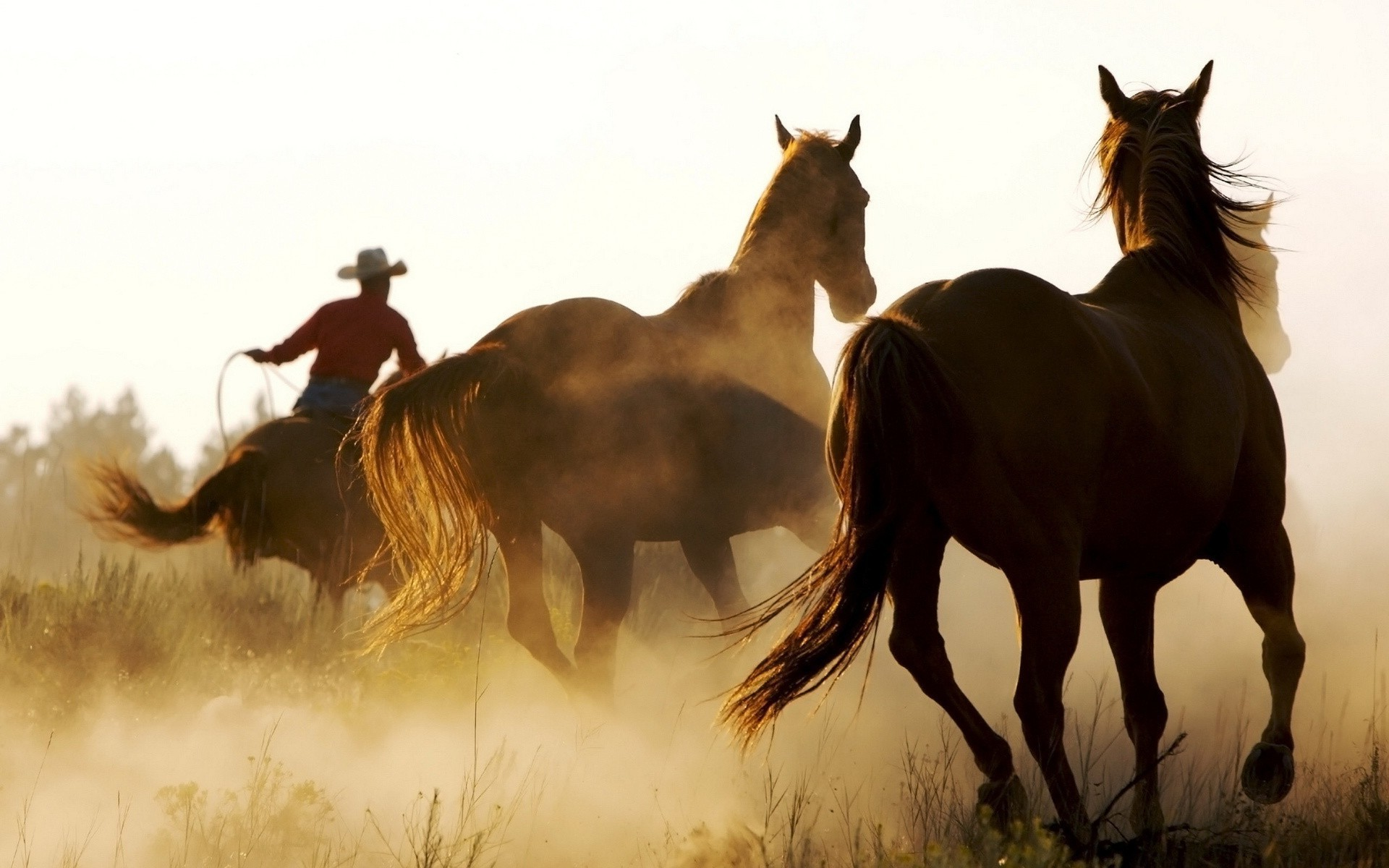 American West HD Wallpapers Backgrounds Wallpaper 1920×1200