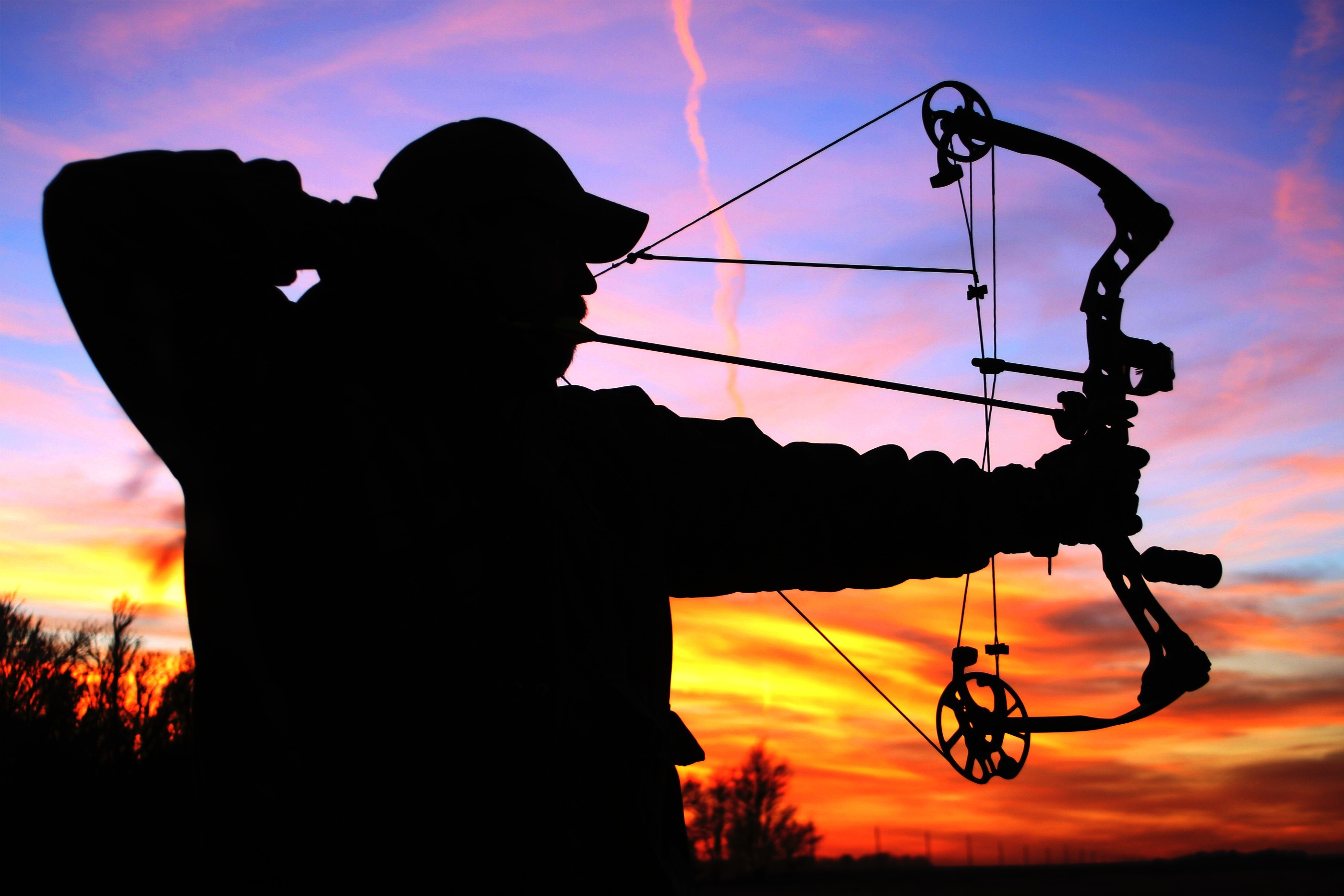 Standoff Over Bowhunting Pits DNR Against Eau Claire | Wisconsin Public  Radio