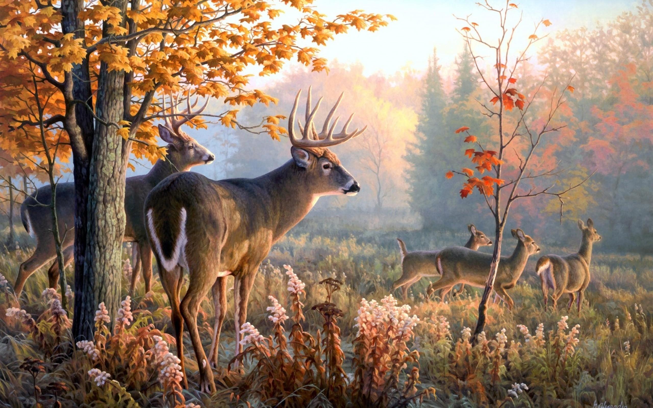 wallpaper, Deer Art Wallpaper hd wallpaper, background desktop .