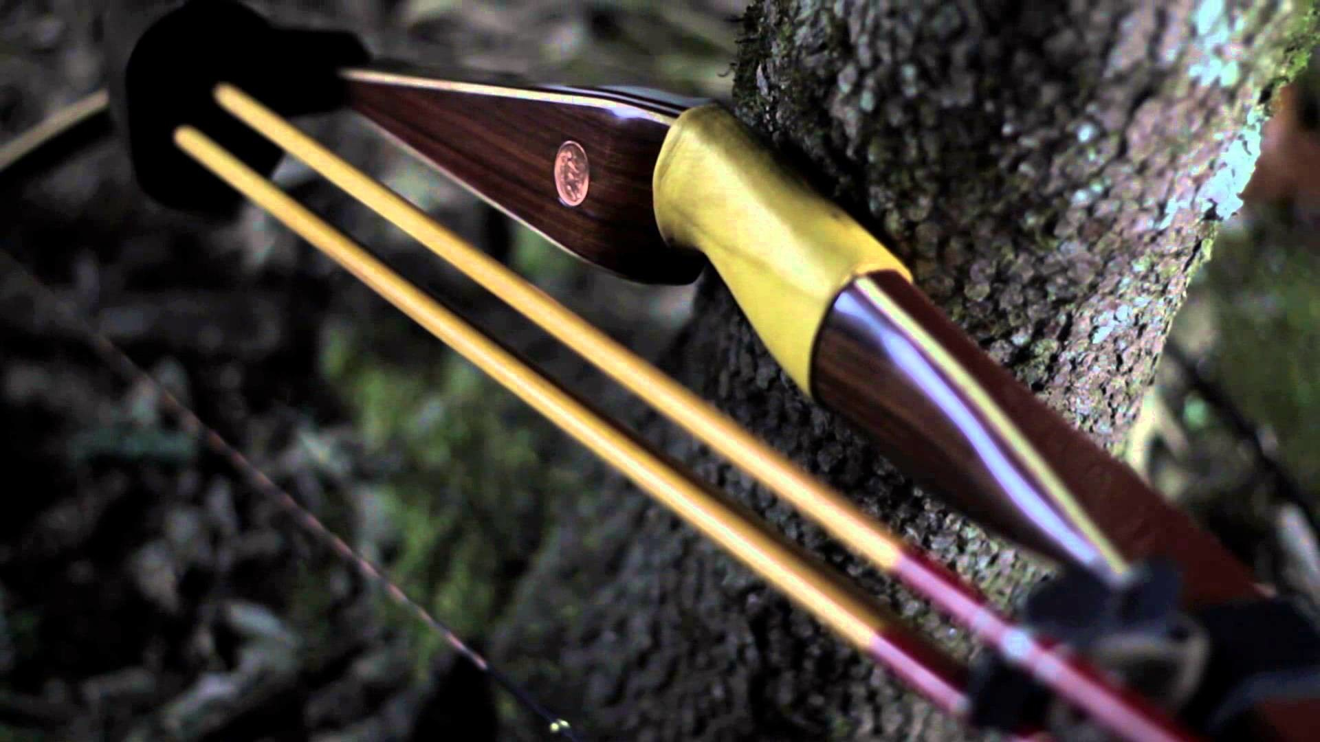 archery bowhunting
