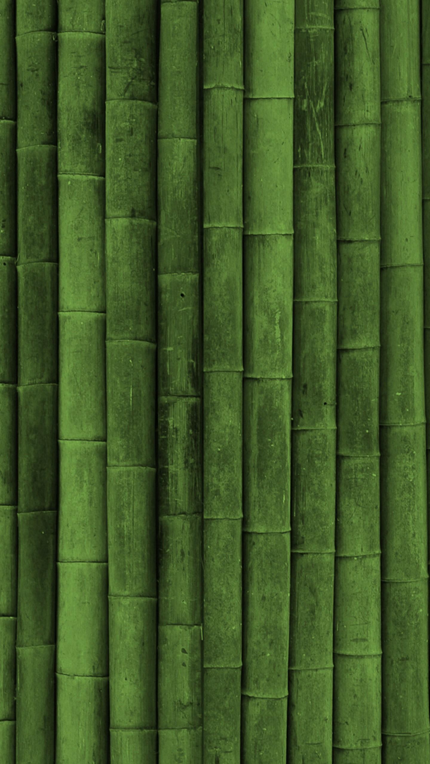 Preview wallpaper bamboo, stick, green, vertical 1440×2560