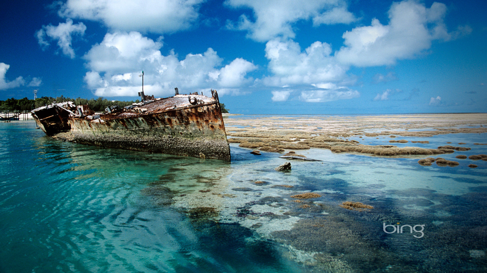 Bing Shipwreck on Heron Island desktop background Australia full hd.