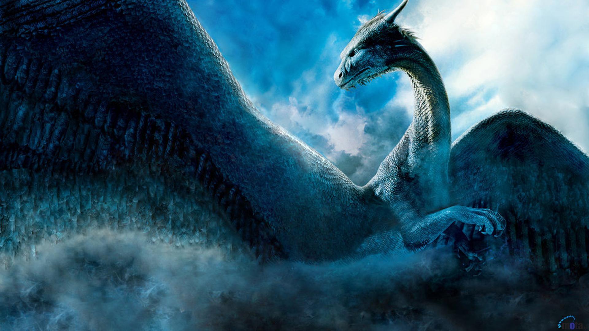 0 Dragon Hd Wallpapers Dragon Wallpaper 1080p