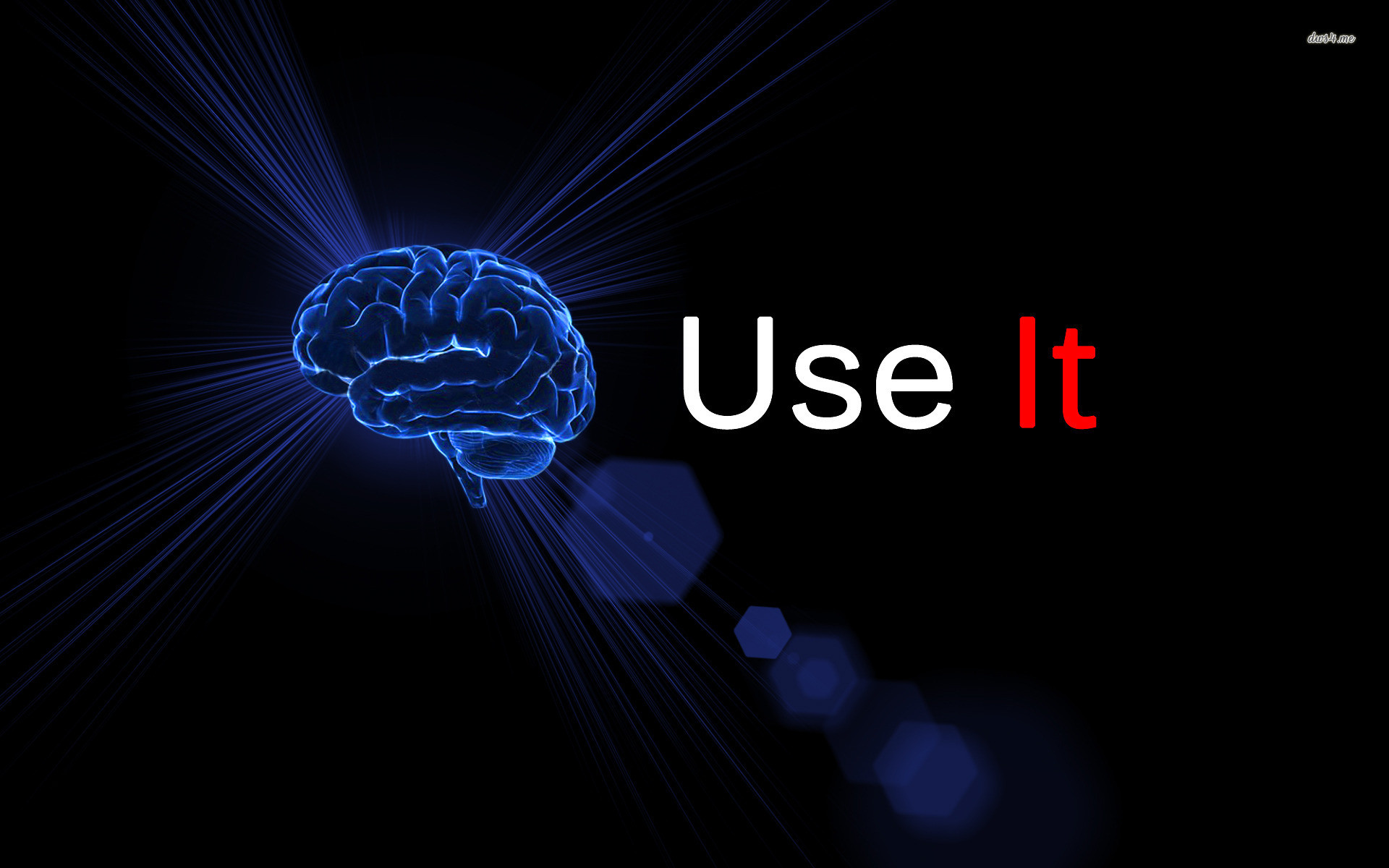 Use Your Brain wallpapers HD free – 468256