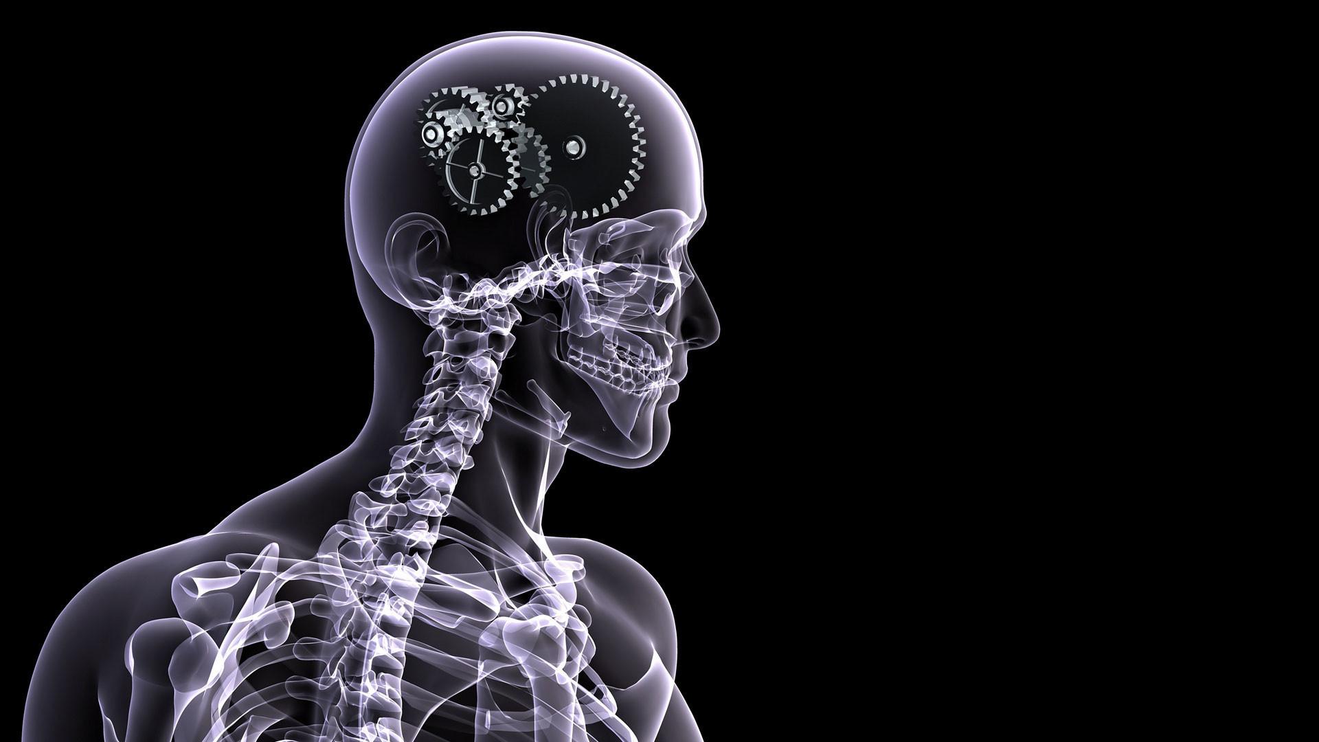 hd pics photos attractive skull brain x ray gears technology hd quality  desktop background wallpaper