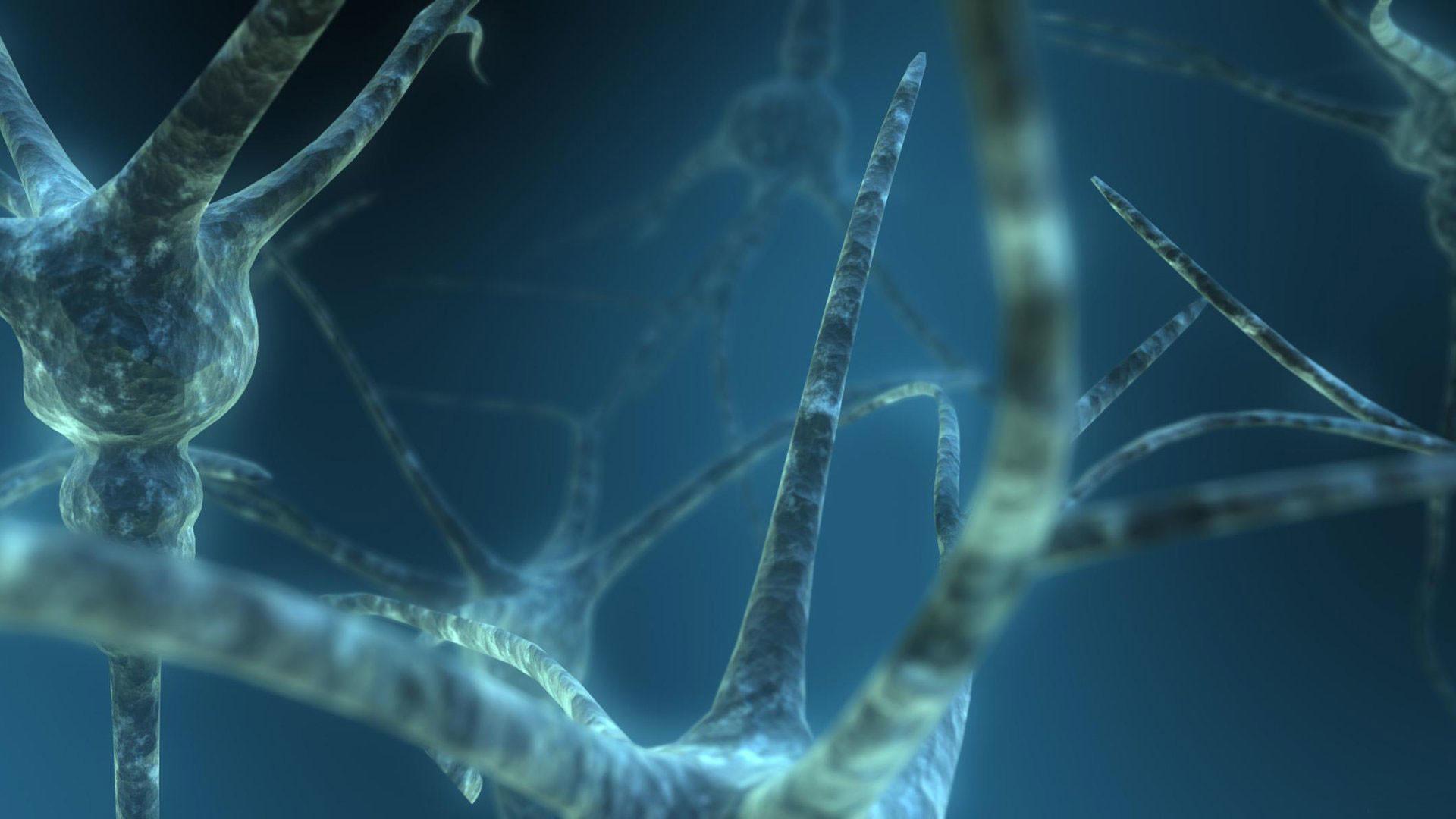 hd pics photos stunning brain cells circuit neurons 3d macro hd quality  desktop background wallpaper