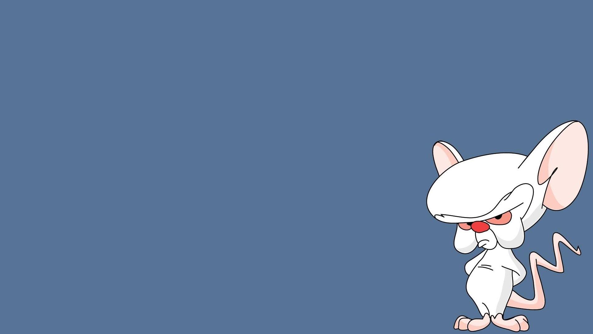 Cartoon – Pinky And The Brain Wallpaper