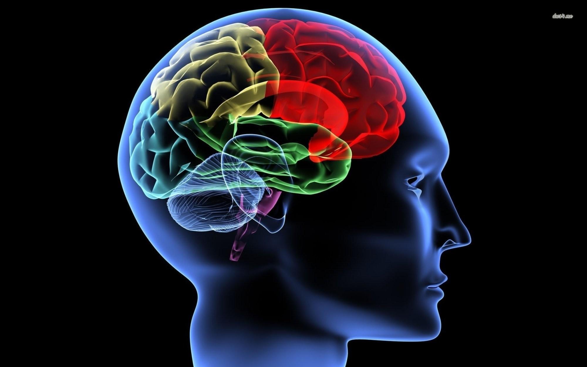 12 Prescriptions to Live a Brain-Healthy Life   Dr. Daniel Amen   Pulse    LinkedIn