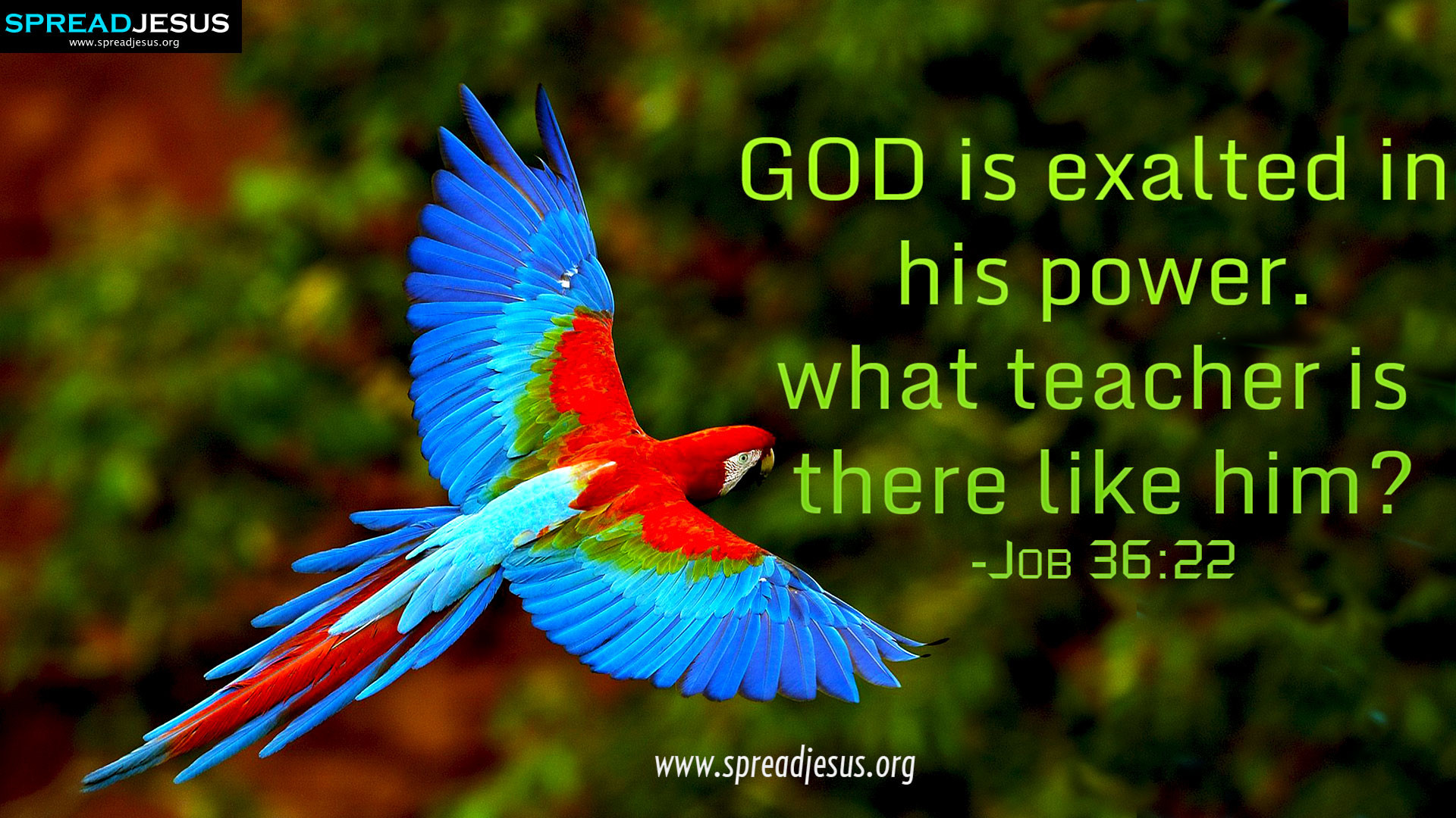CHRISTIAN HD WALLPAPERS: HOLY BIBLE QUOTES : Job 36:22-GOD is exalted