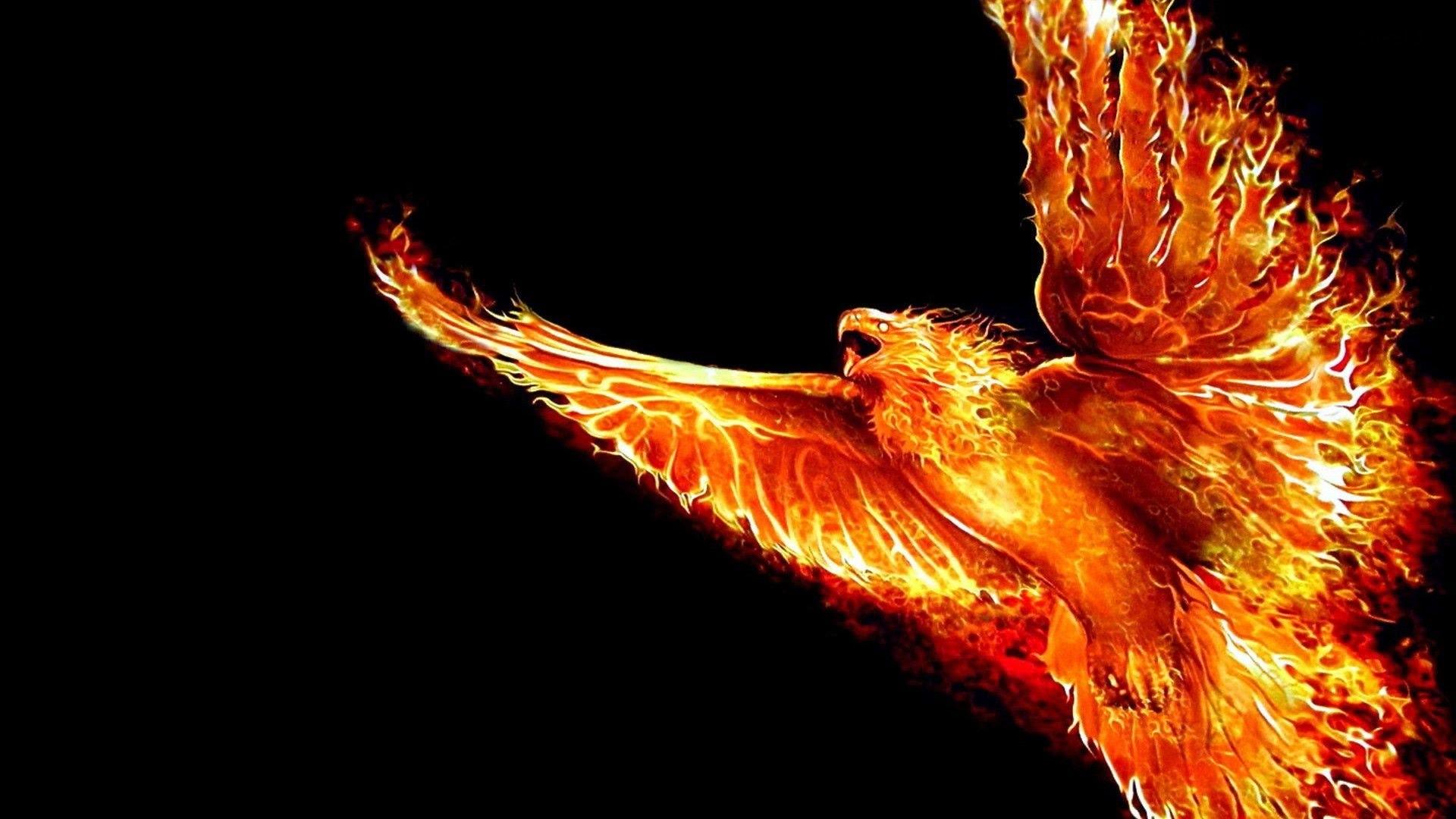 Guide to Install Phoenix On Kodi 17 Krypton