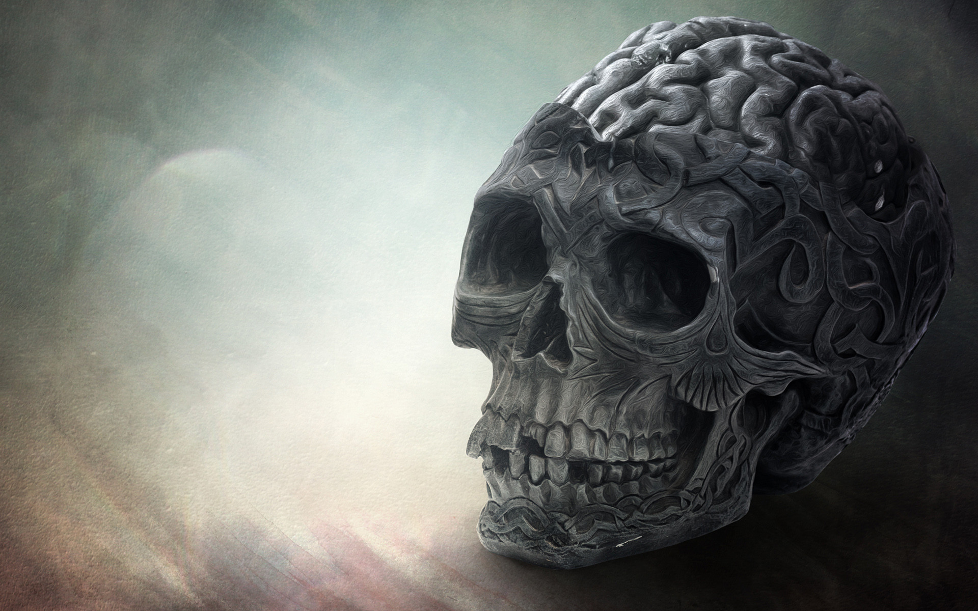brain pc hd wallpapers free download desktop free download hd skull .